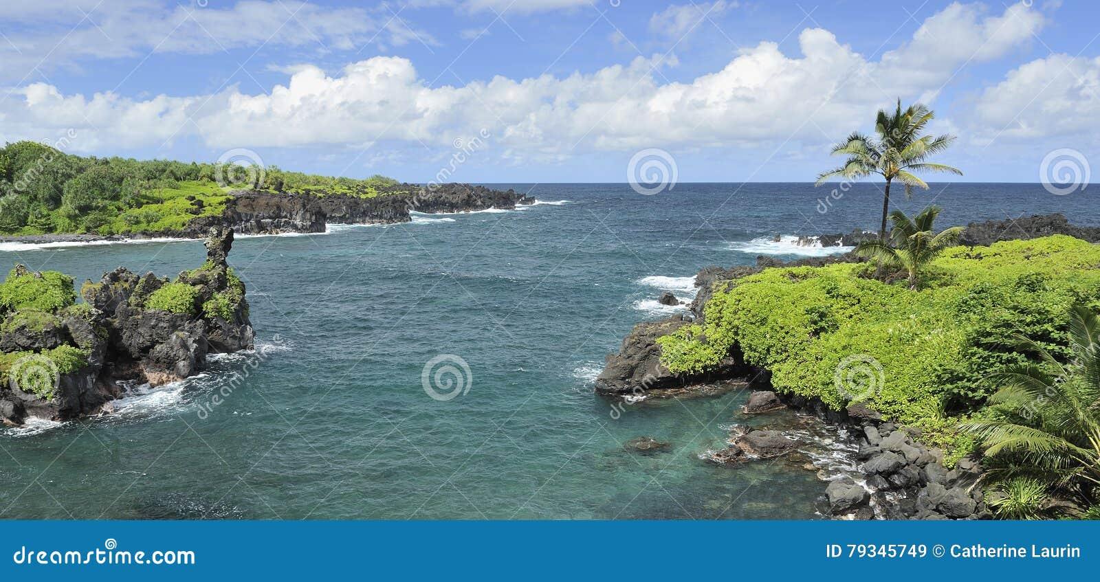 De kustlijn van Maui, Hawaï