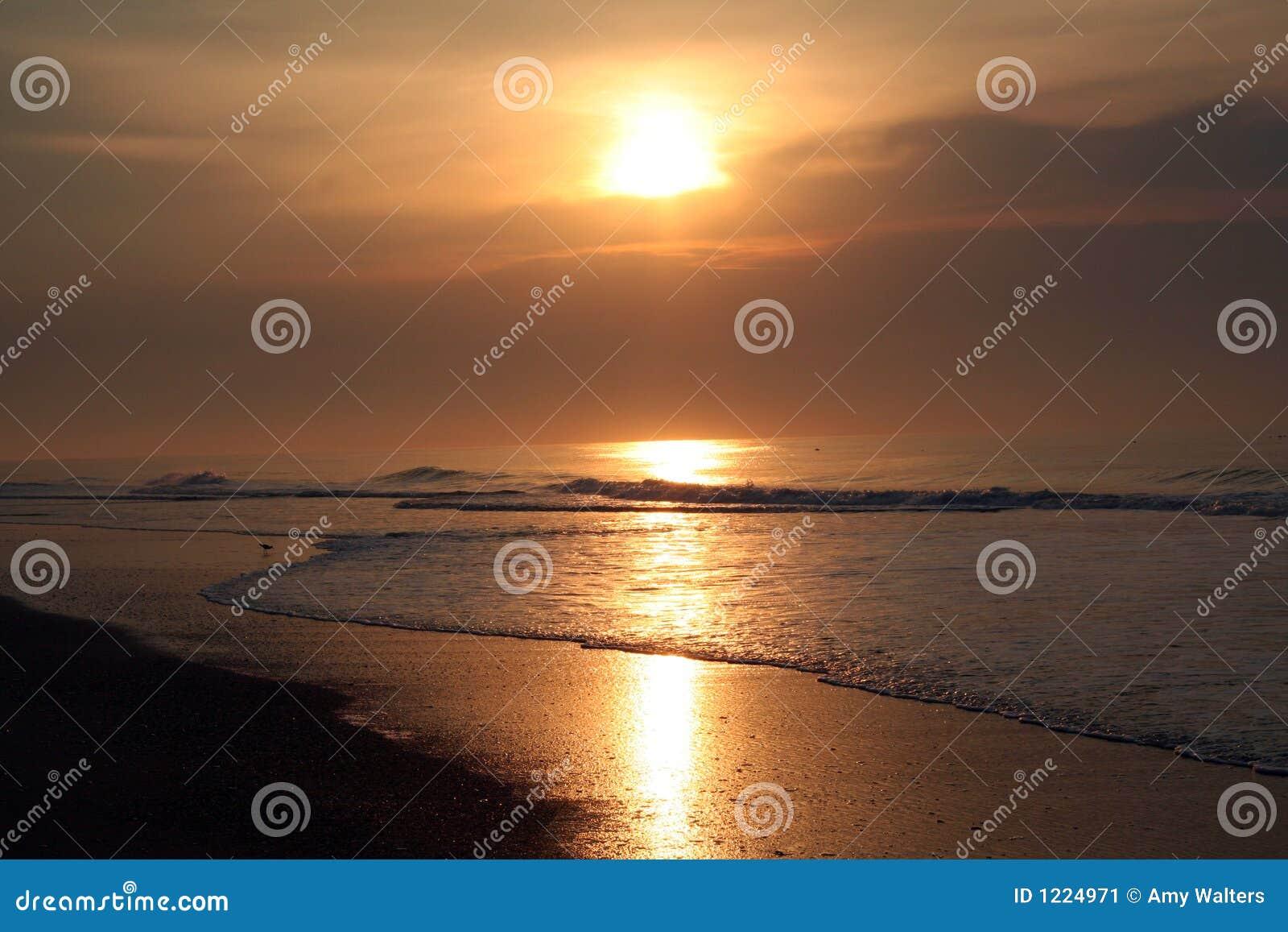 De kustzonsopgang van het oosten