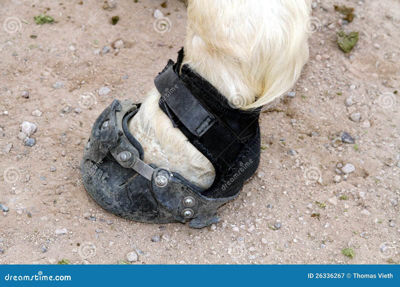 laarzen in vorm houden