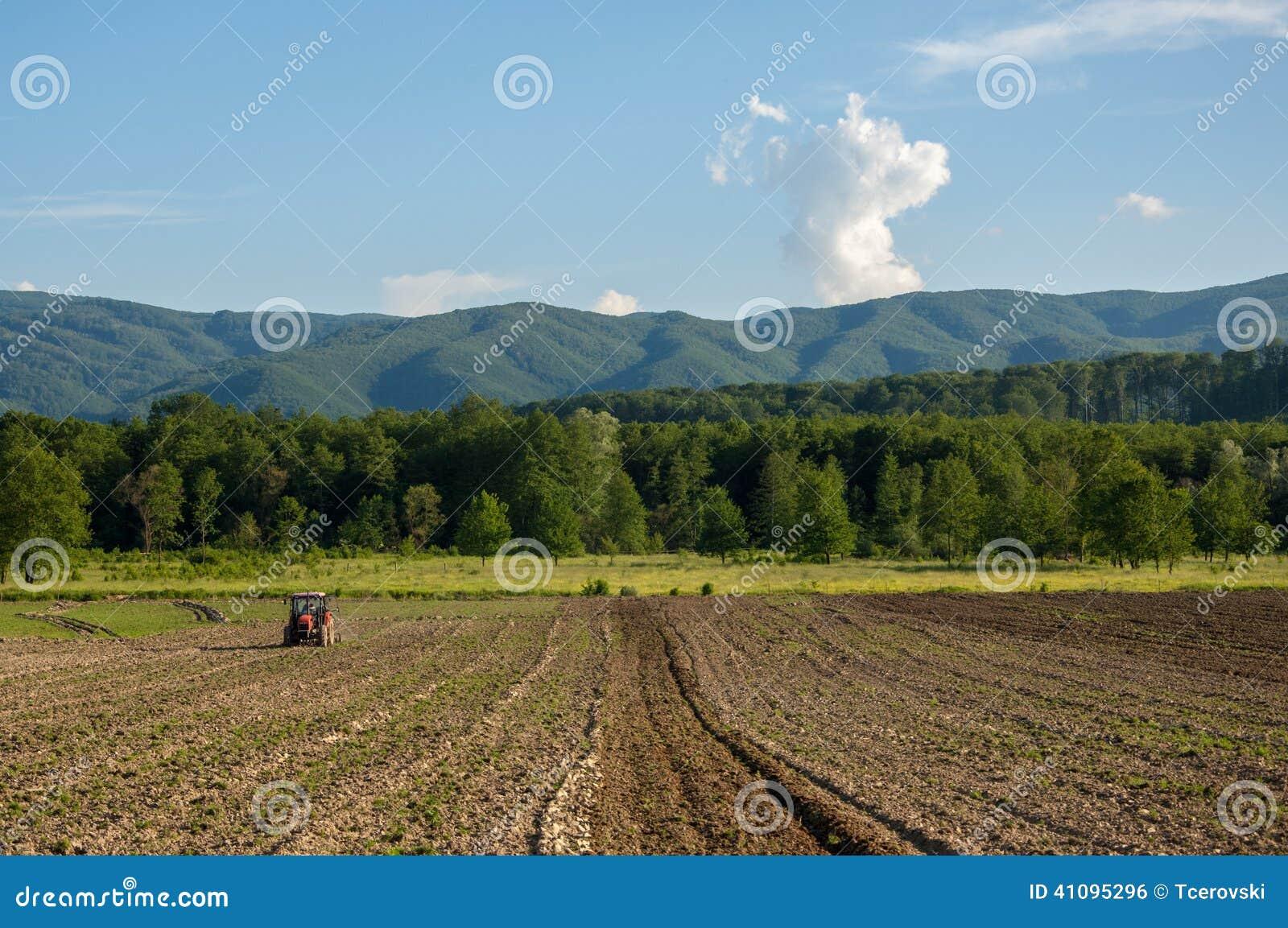 de landbouw met tractor en ploeg op gebied met berg papuk