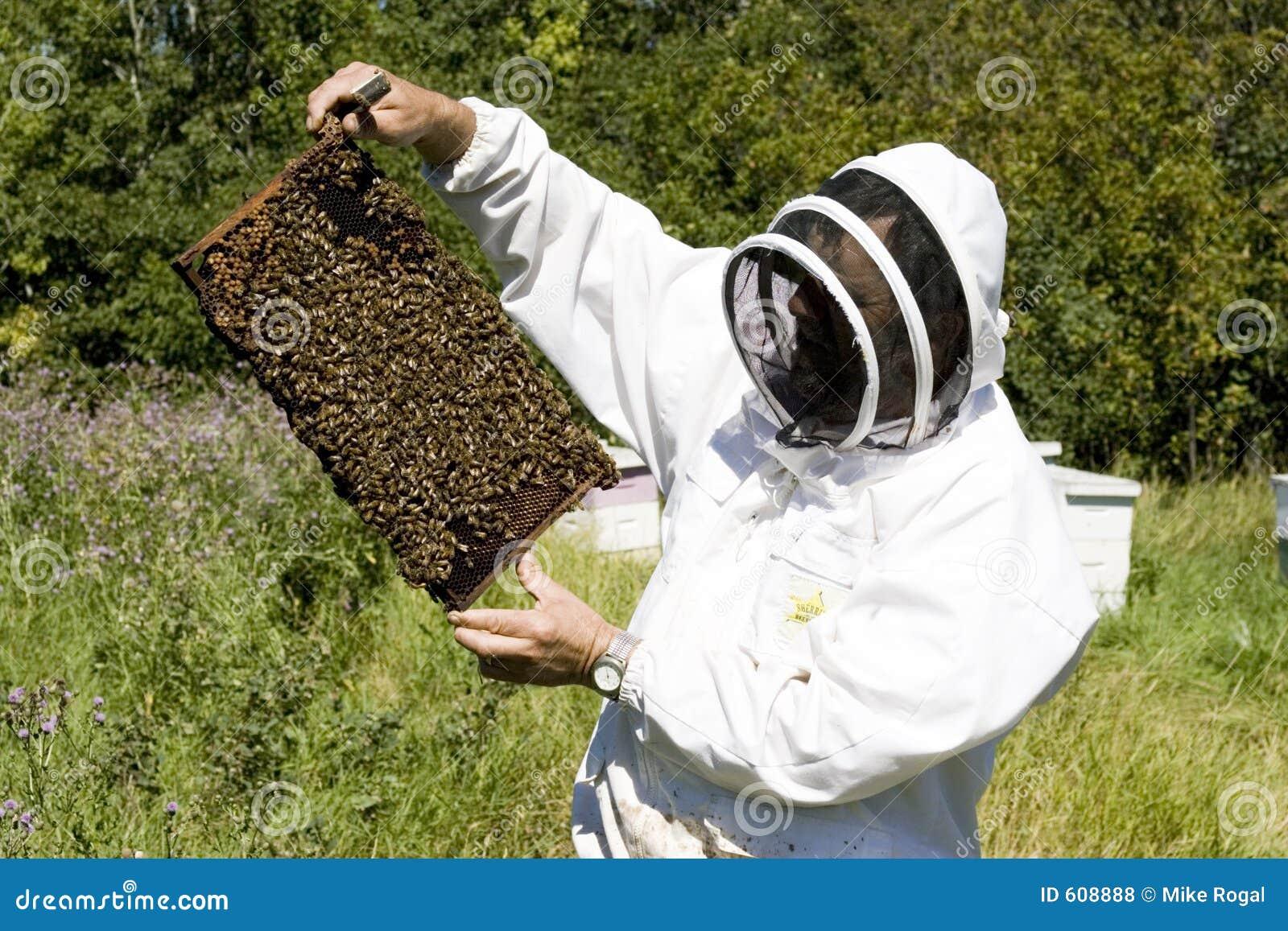 De Landbouwer van de honing