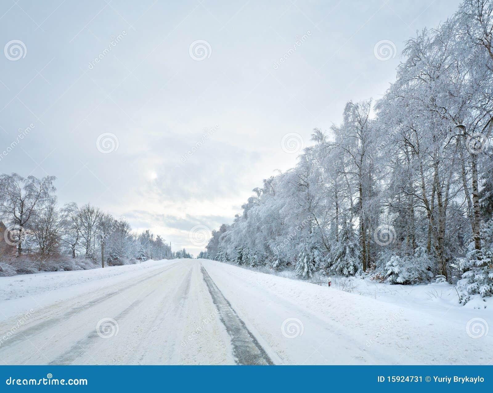 De landweg van de winter