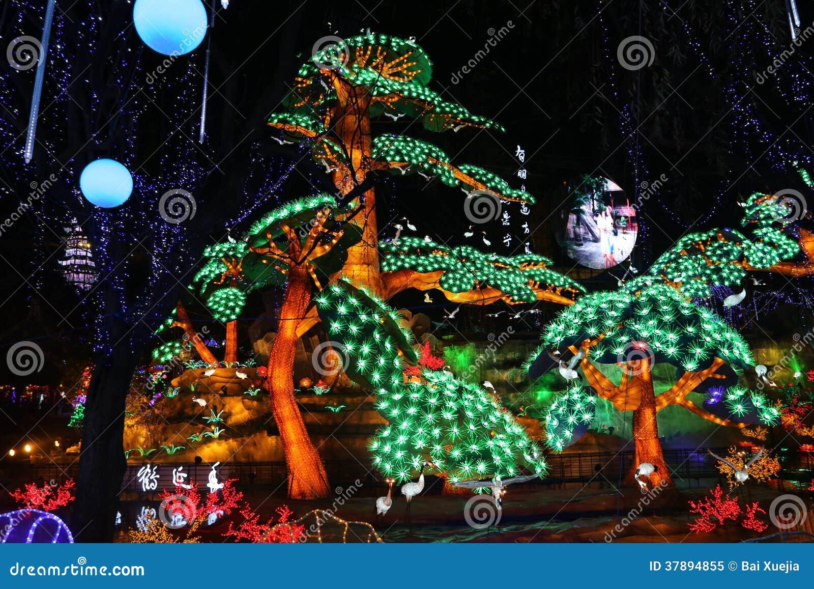 De lantaarn toont in zigong, China in 2014