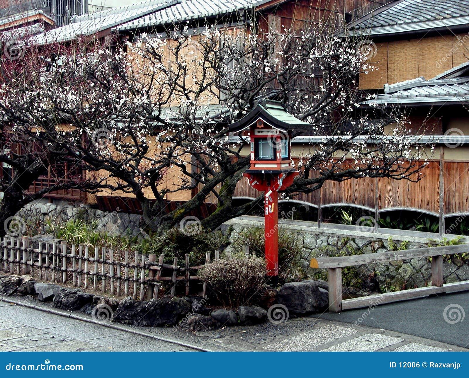 De lantaarn van Gion in de lente