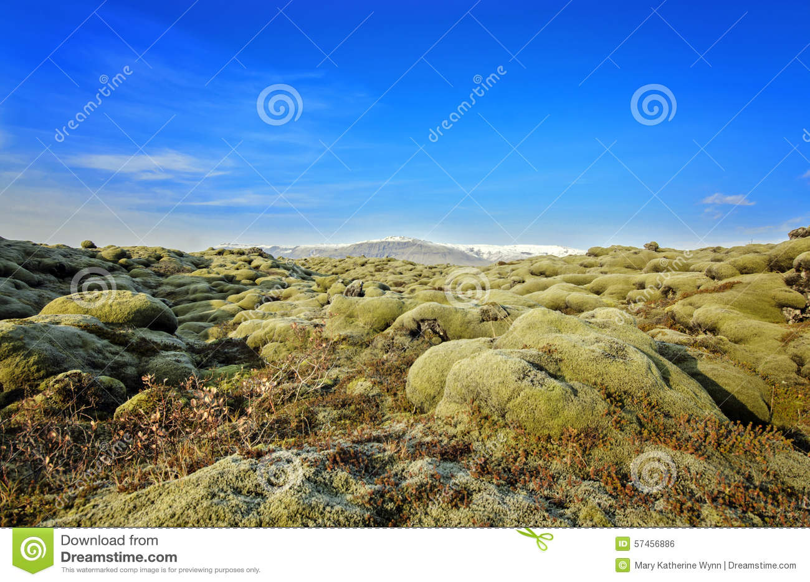 De Lavagebied van IJsland