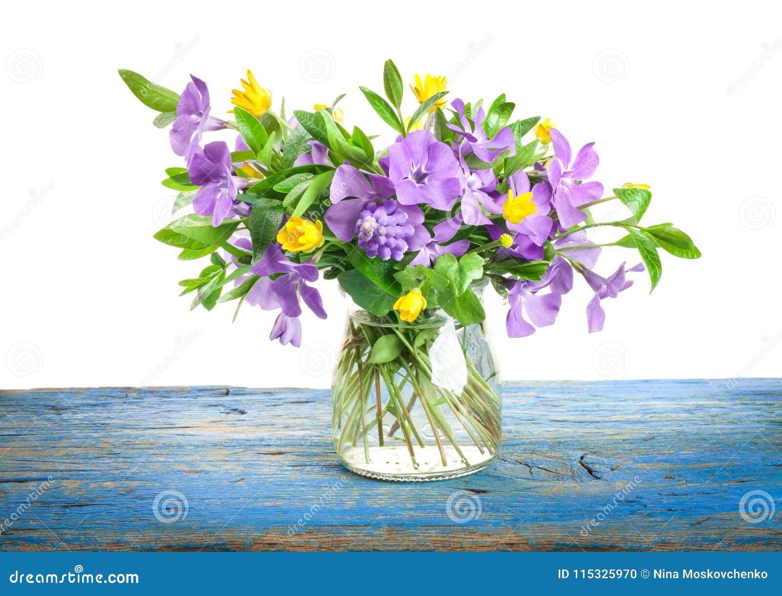 De lente bloeit Maagdenpalm in glasvaas