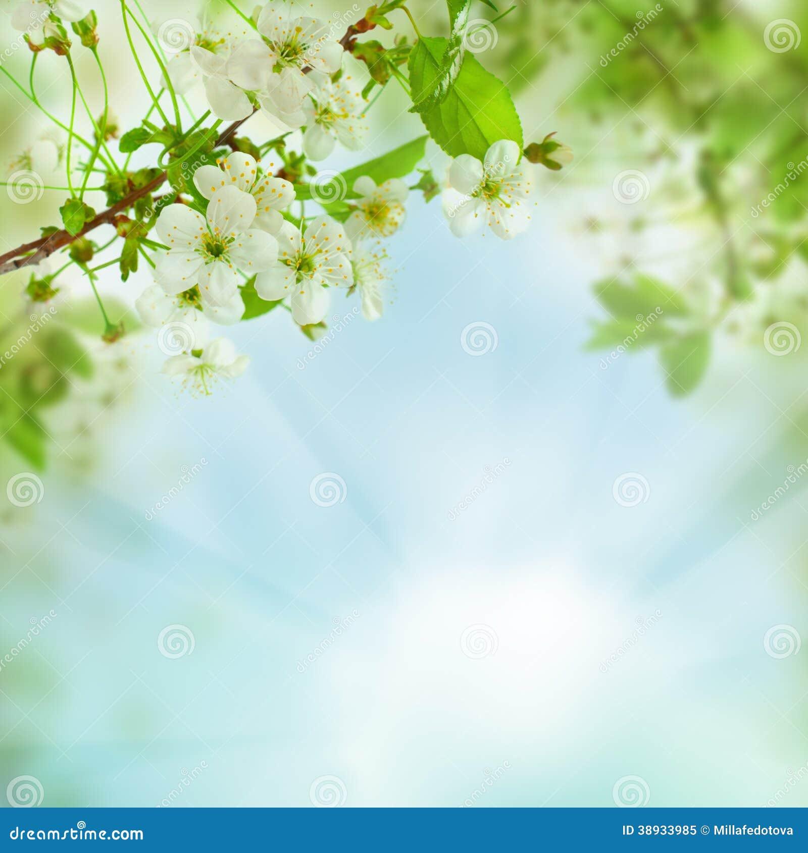 De lente bloemenachtergrond - abstract aardconcept
