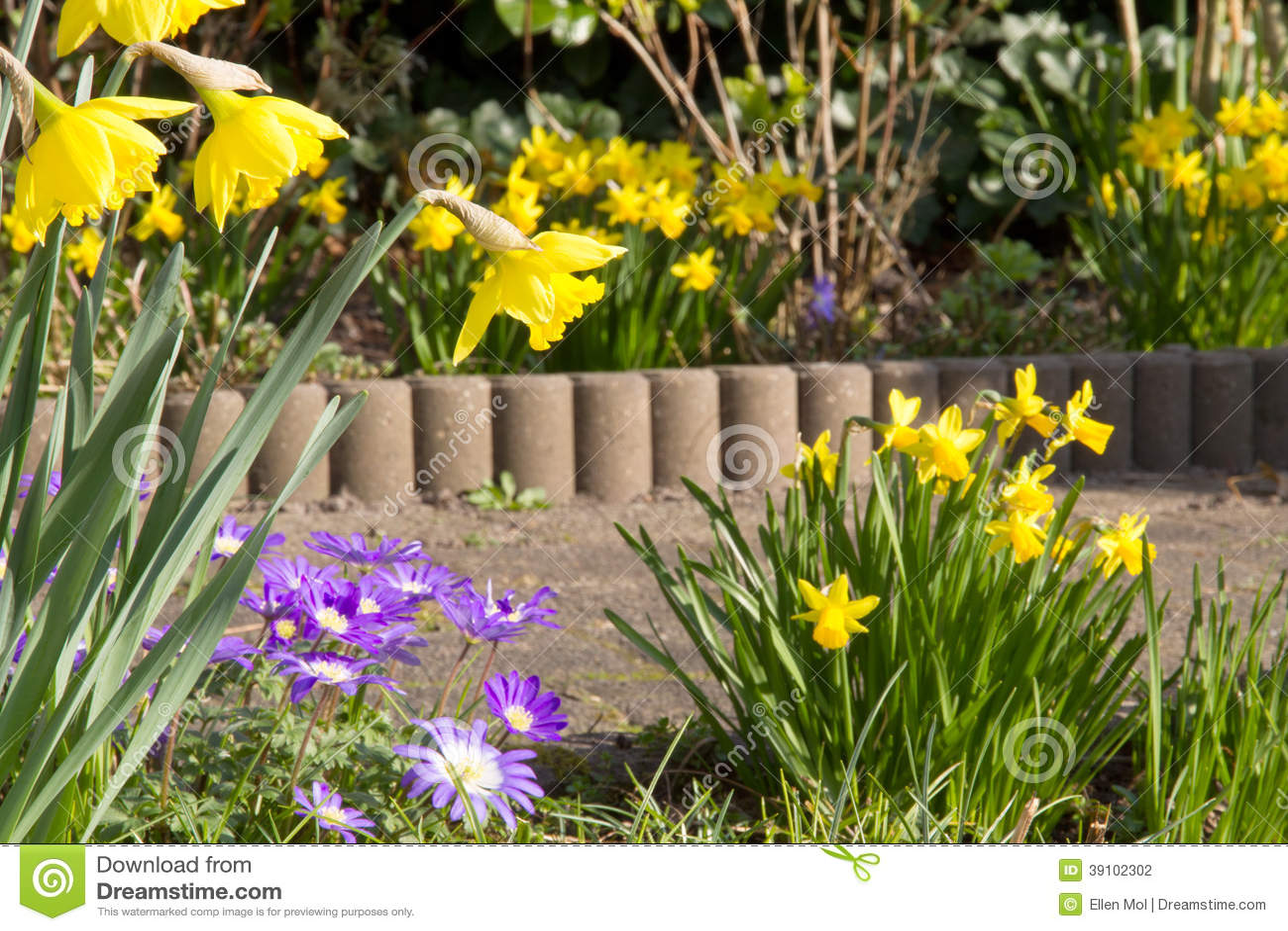 De lente in de tuin