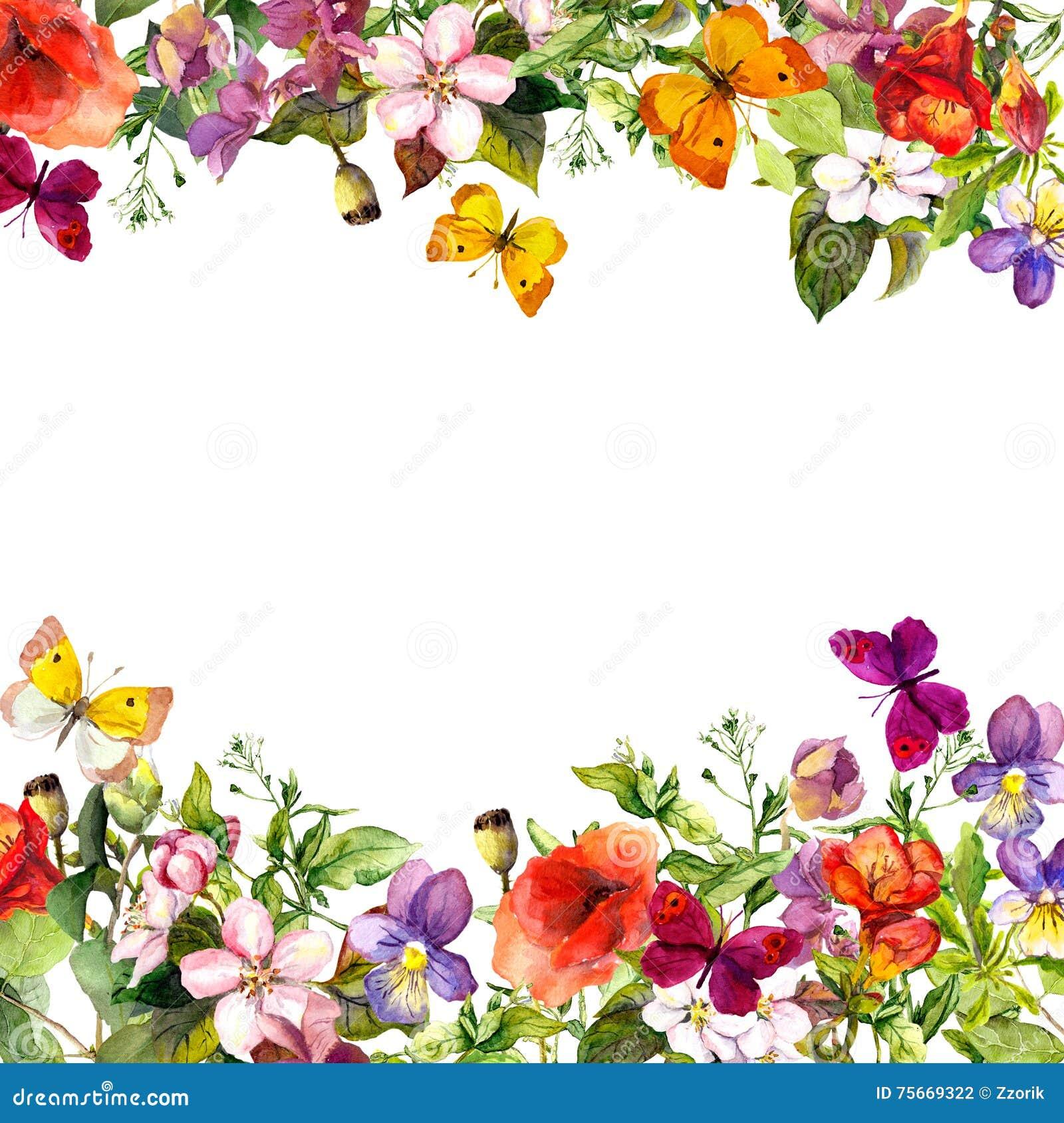 De lente, de zomertuin: bloemen, gras, kruiden, vlinders Bloemen patroon watercolor