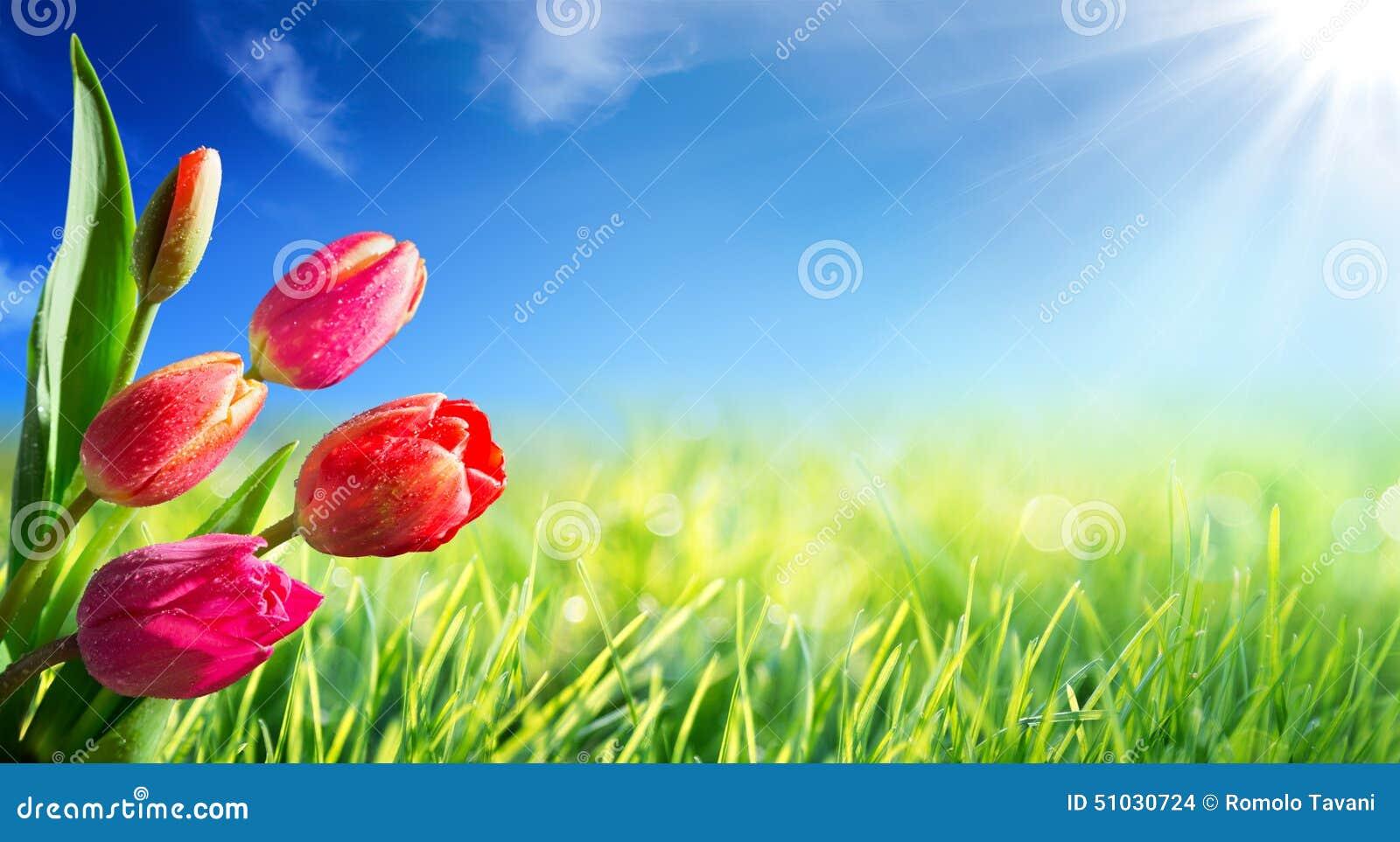De Lente En Pasen achtergrond Met Tulpen Stock Foto   Afbeelding  51030724