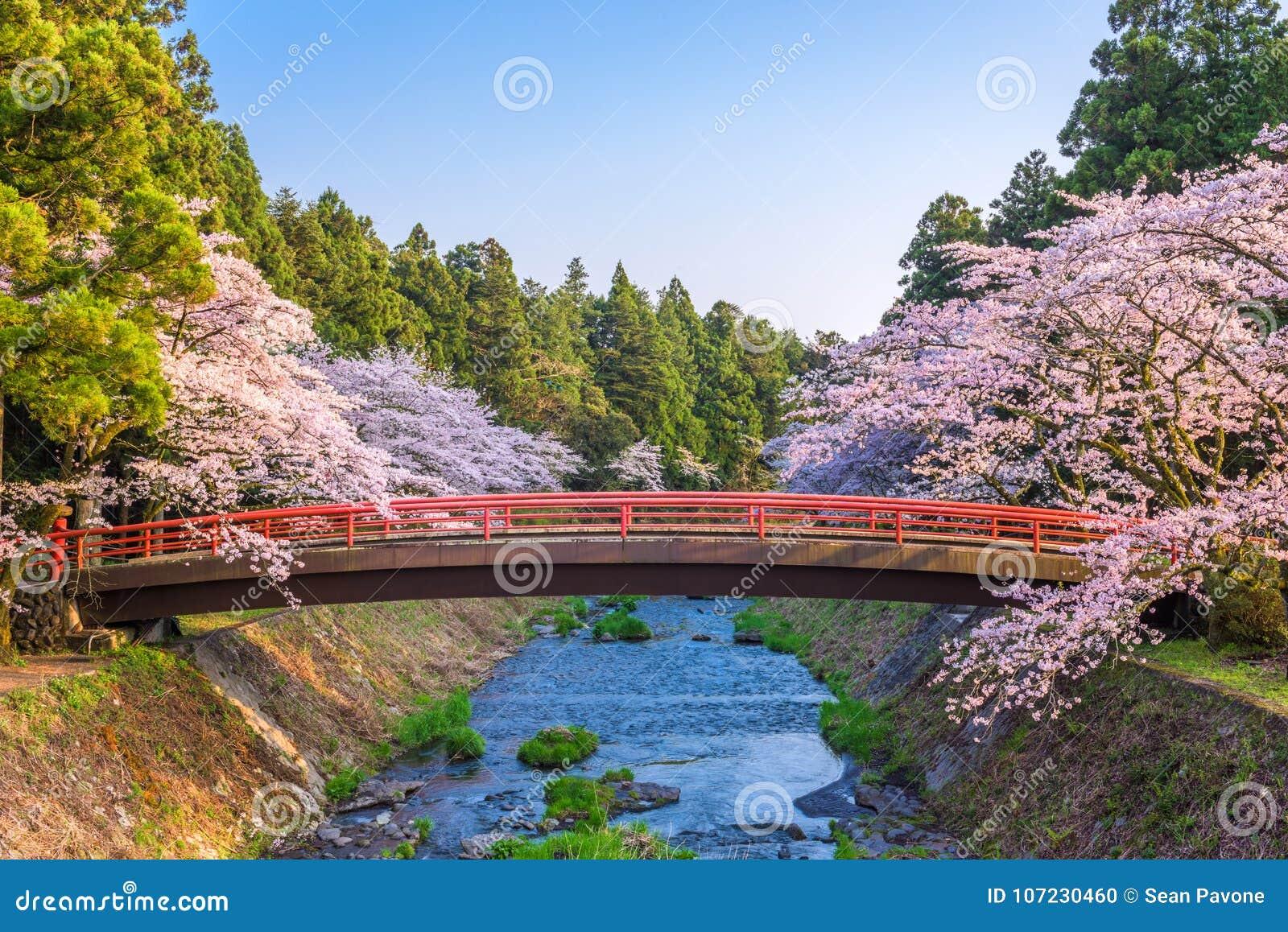 De lente in Japan