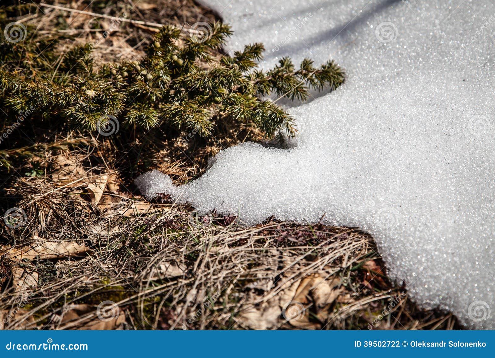 De lente in Krimbergen
