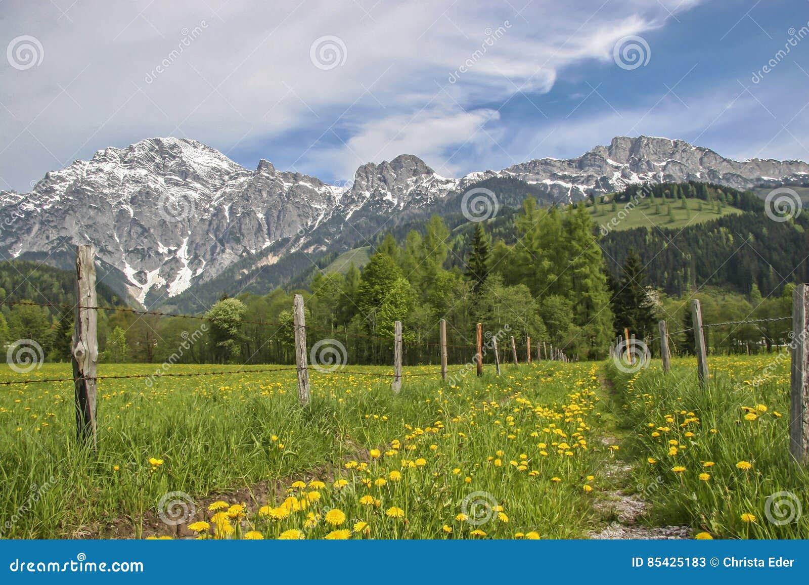 De lente in Loferer-land