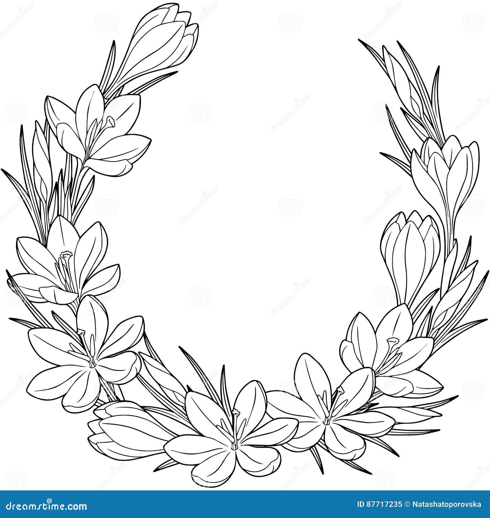 De lentebloem vignett van krokussen Vector geïsoleerde elementen Zwart-wit beeld voor volwassen ontspanning Beeld voor ontwerp va