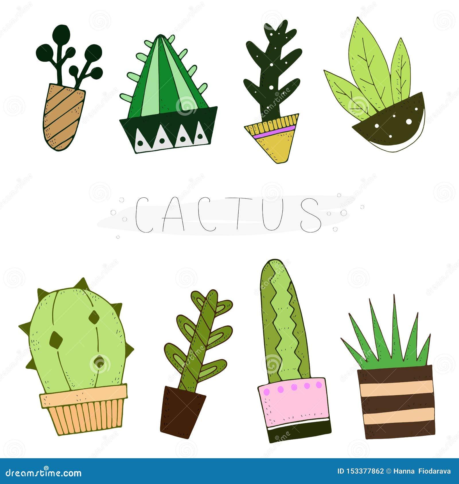 De leuke reeks van de beeldverhaalkleur cactussen met de inschrijving Vector illustratie