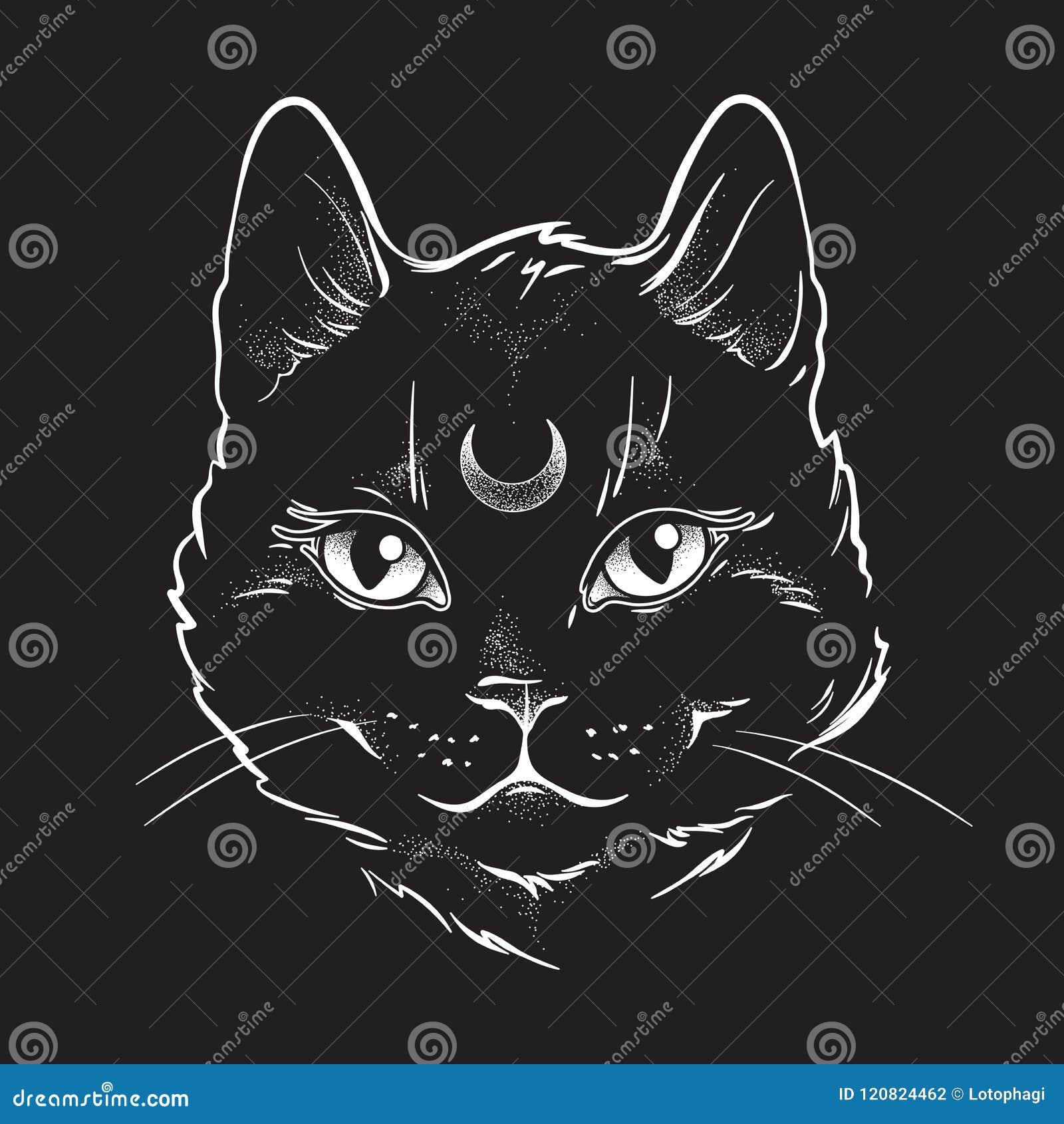 De leuke zwarte kat met maan op zijn kunst van de voorhoofdlijn en de punt werken Het meest tapest Wiccan vertrouwde geest, Hallo