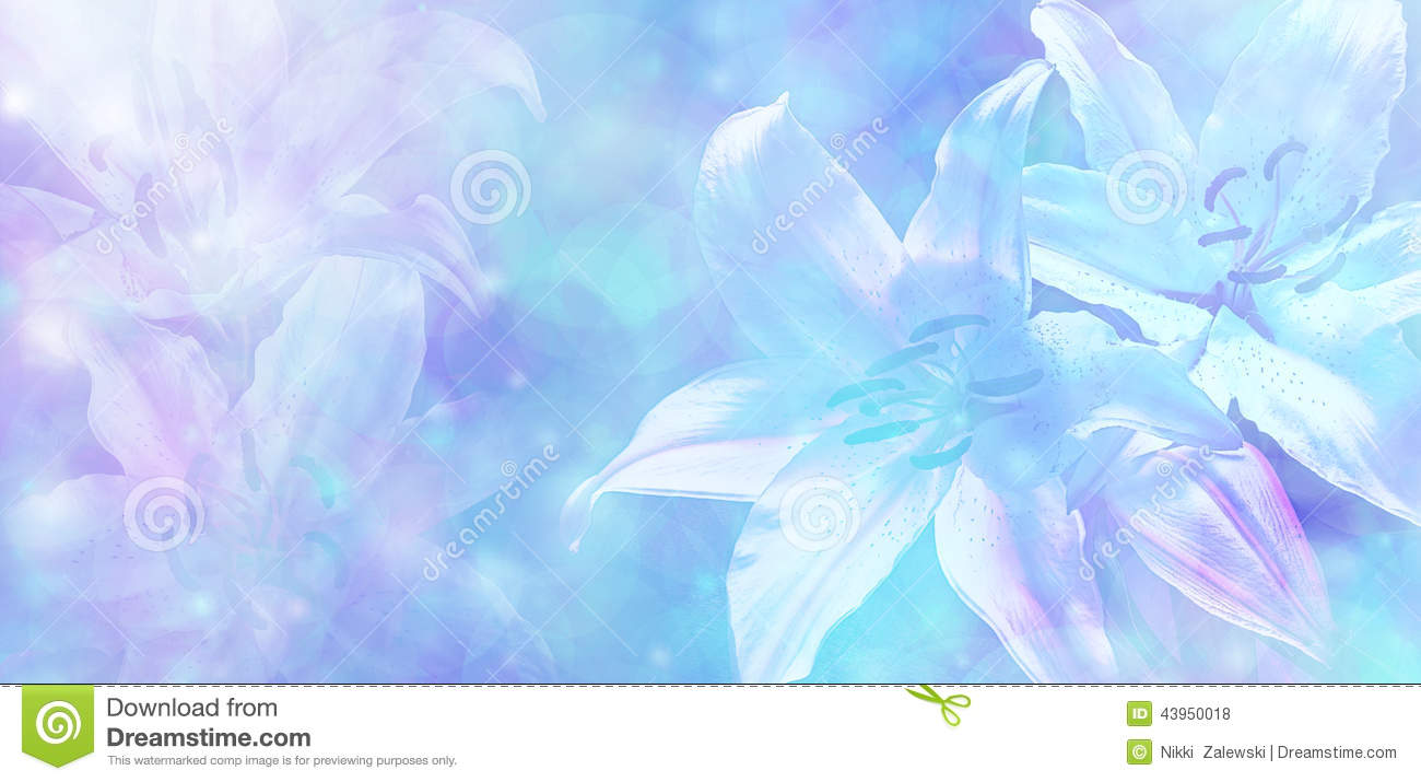 wallpaper turquoise flowers