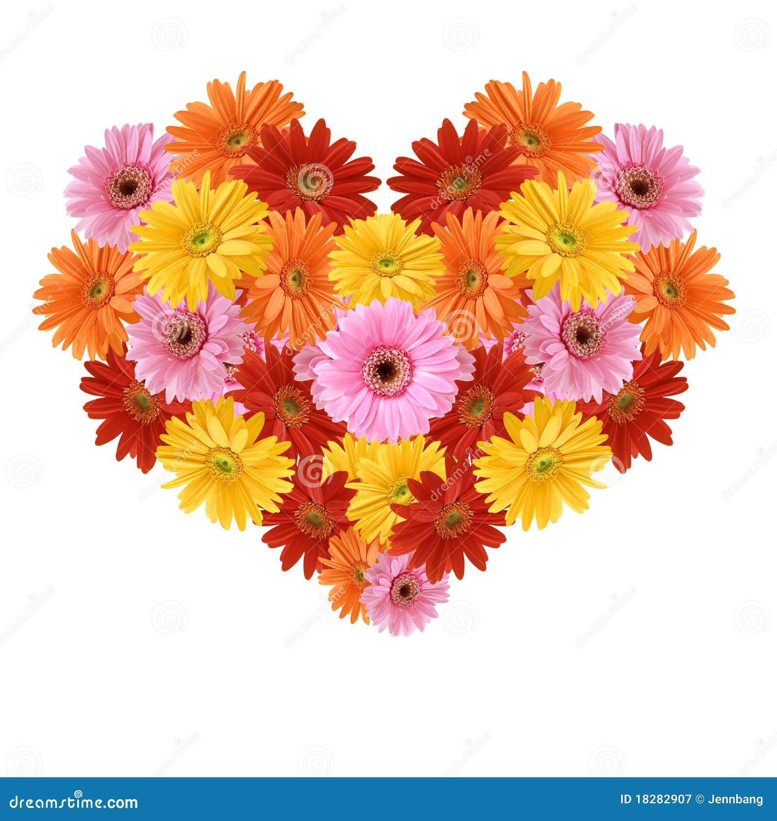 De Liefde Van Daisy Stock Afbeelding Afbeelding Bestaande Uit Geel