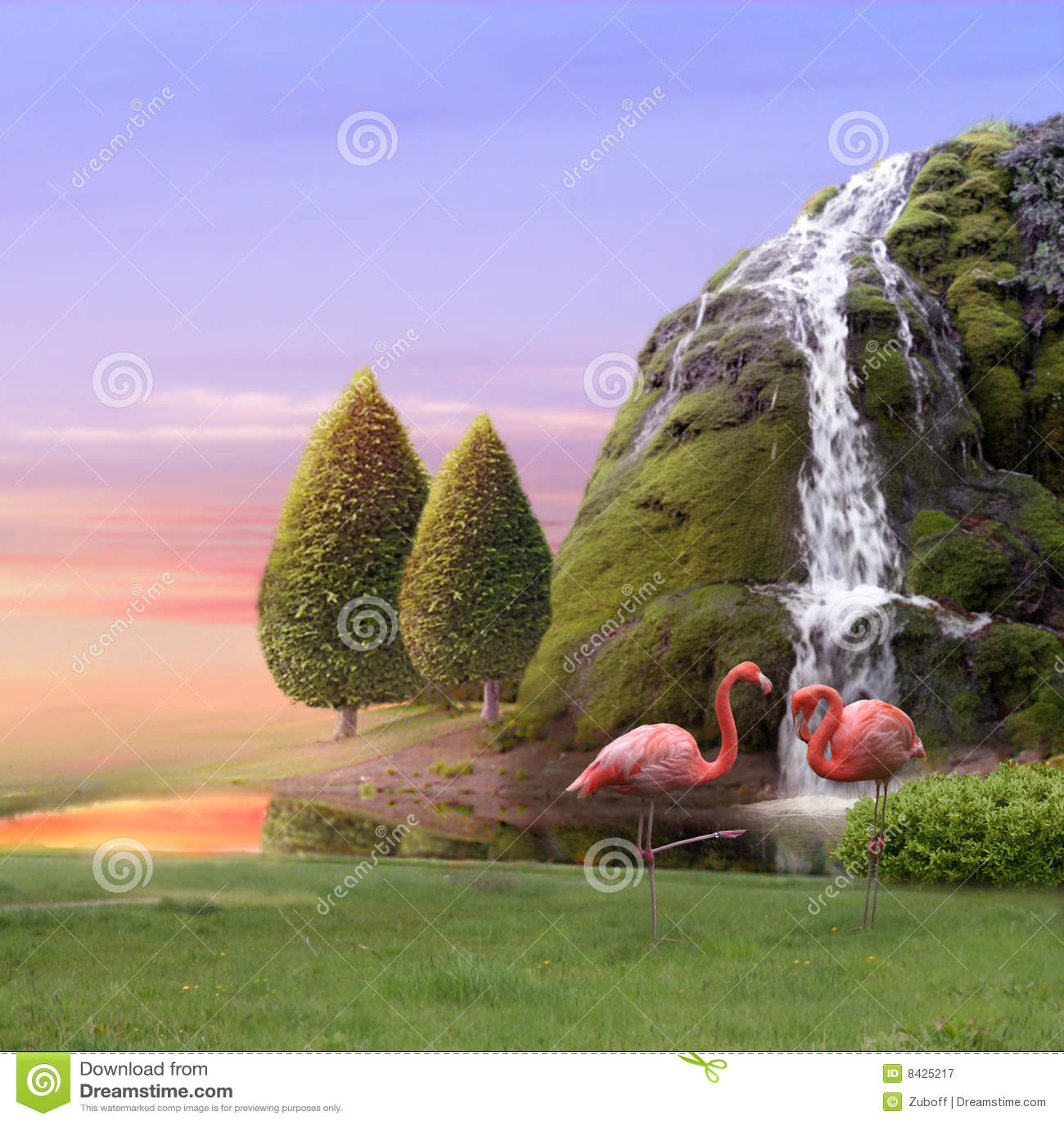 De liefde van flamingo s