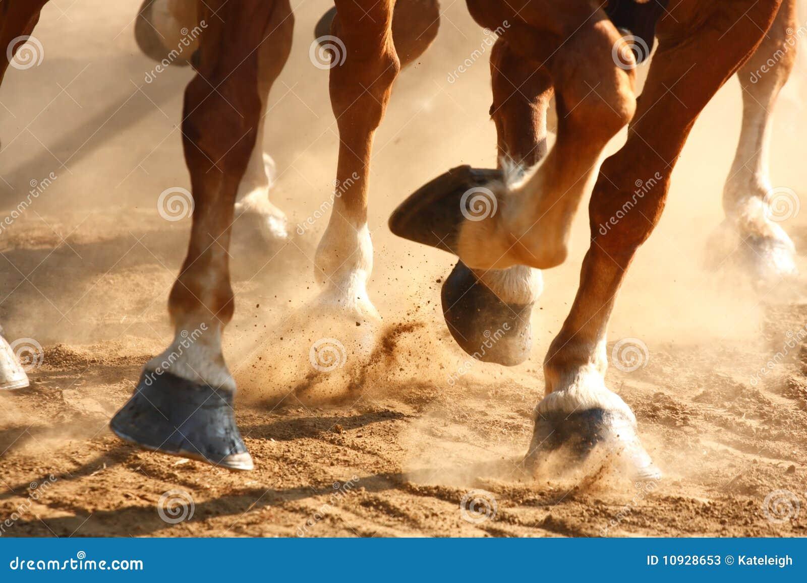 De lopende Hoeven van Paarden