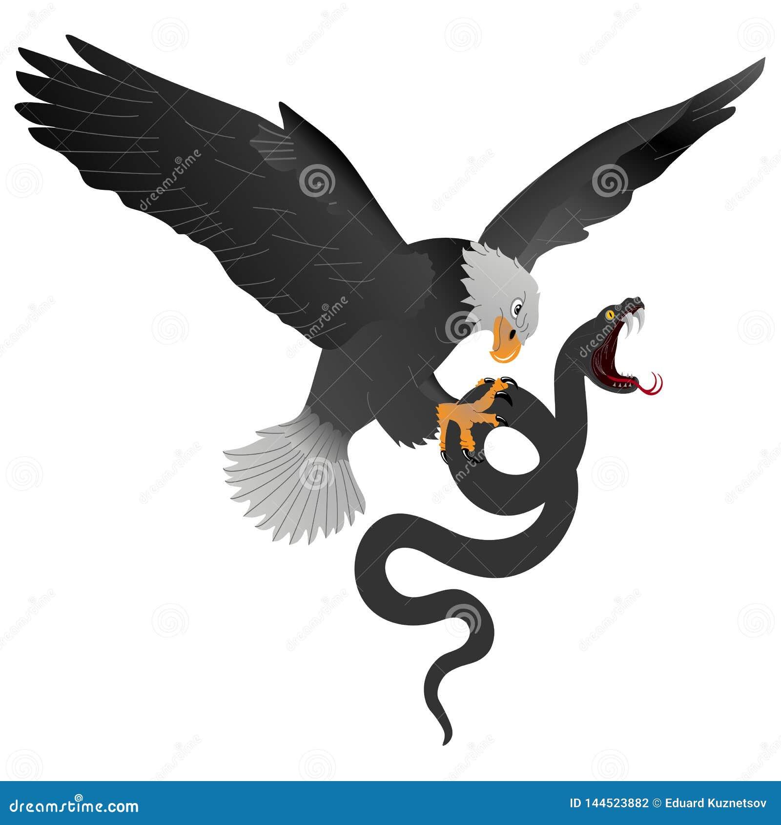De machtige bergadelaar kwelt een grote zwarte slang