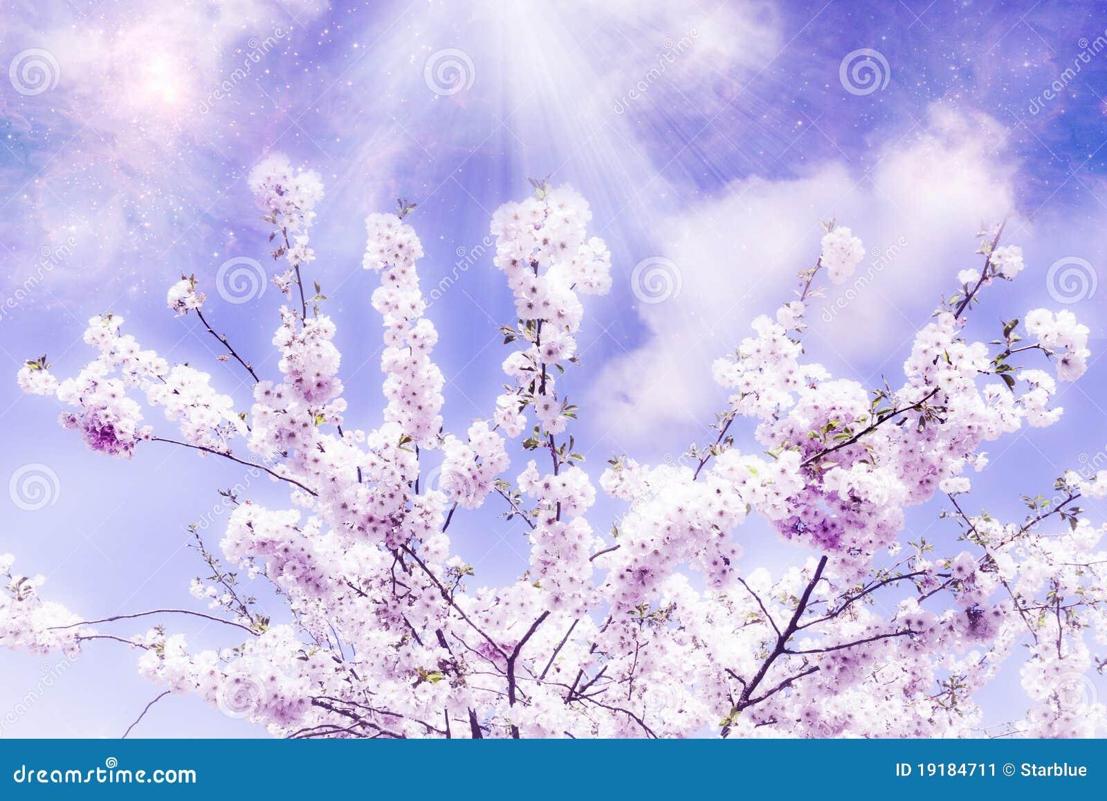 De magische lente