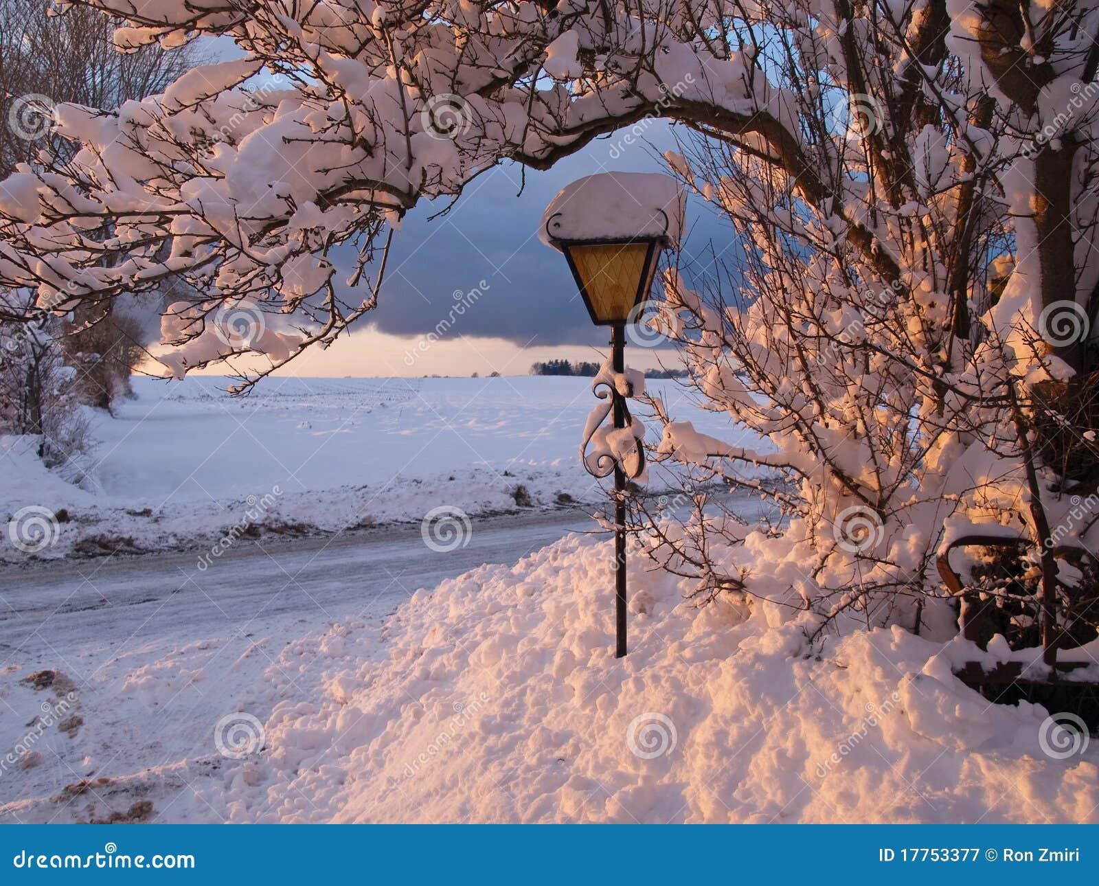De Magische Sneeuw Van Het De Winterlandschap Op Een