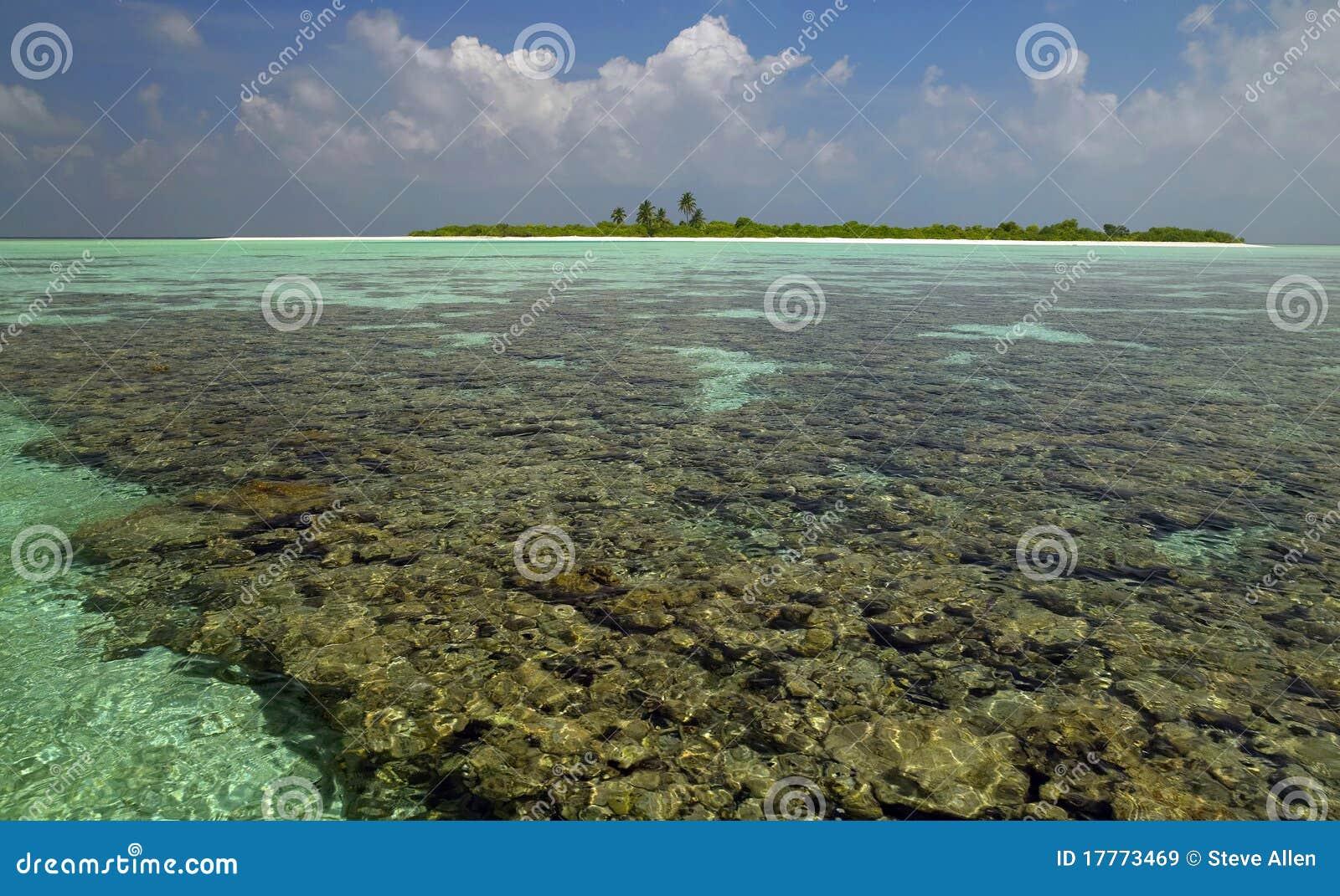 De Maldiven - Tropische Lagune