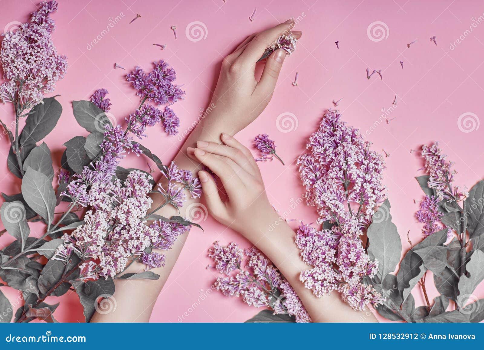 De manierkunst overhandigt ter beschikking natuurlijke schoonheidsmiddelenvrouwen, heldere purpere lilac bloemen met heldere cont