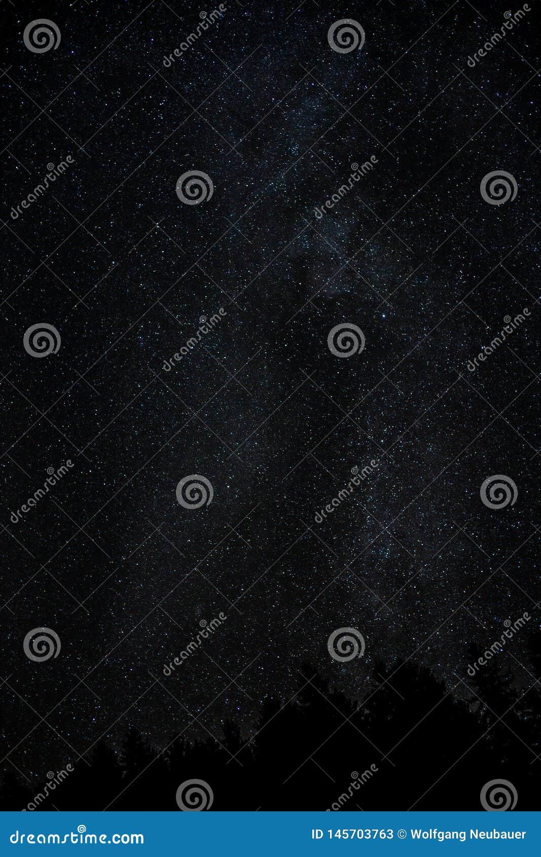 De melkachtige manier van de nachthemel met miljard sterren en boomsilhouet