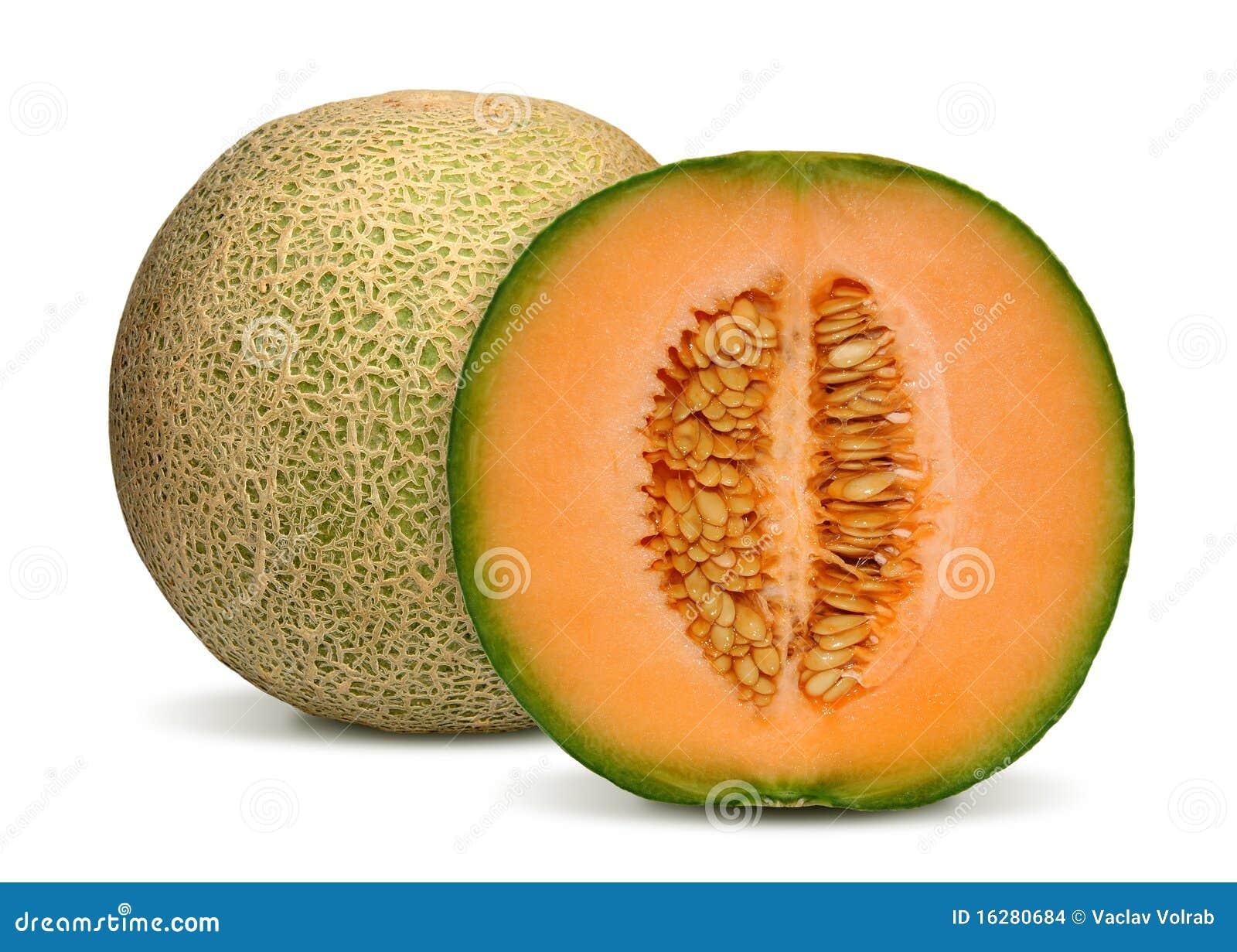 De meloen van de kantaloep