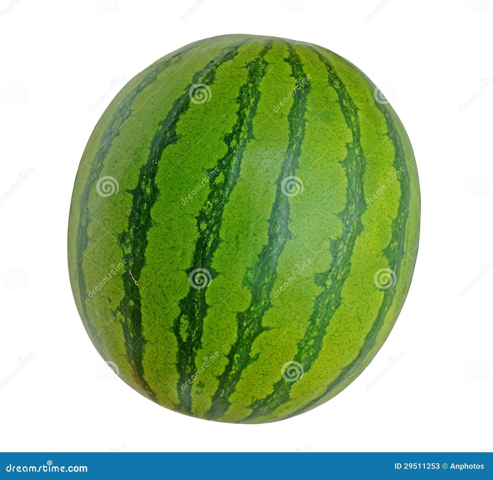 De meloen van het water