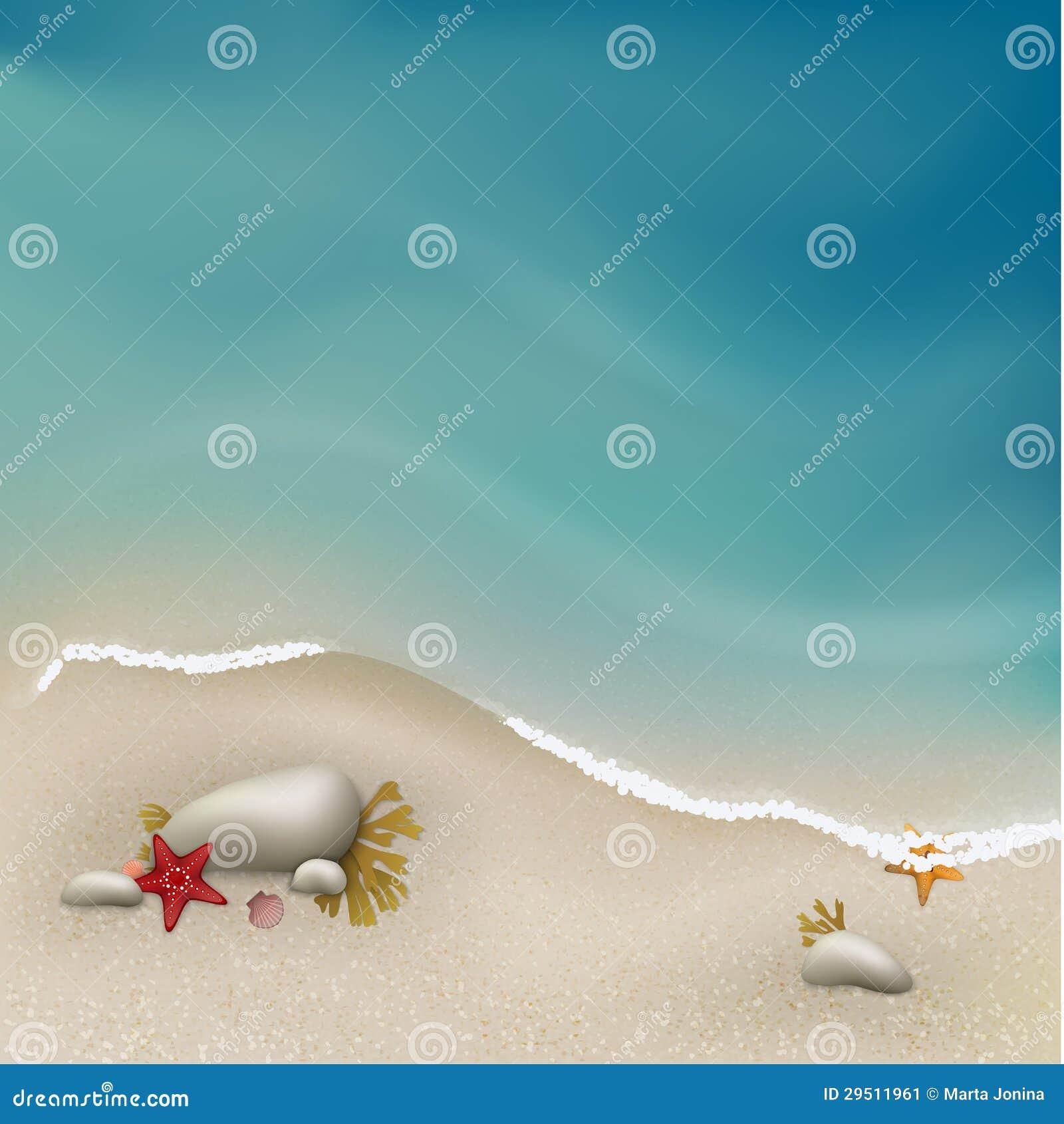 De mening van de kust met rotsen, overzees gras en zeesterren