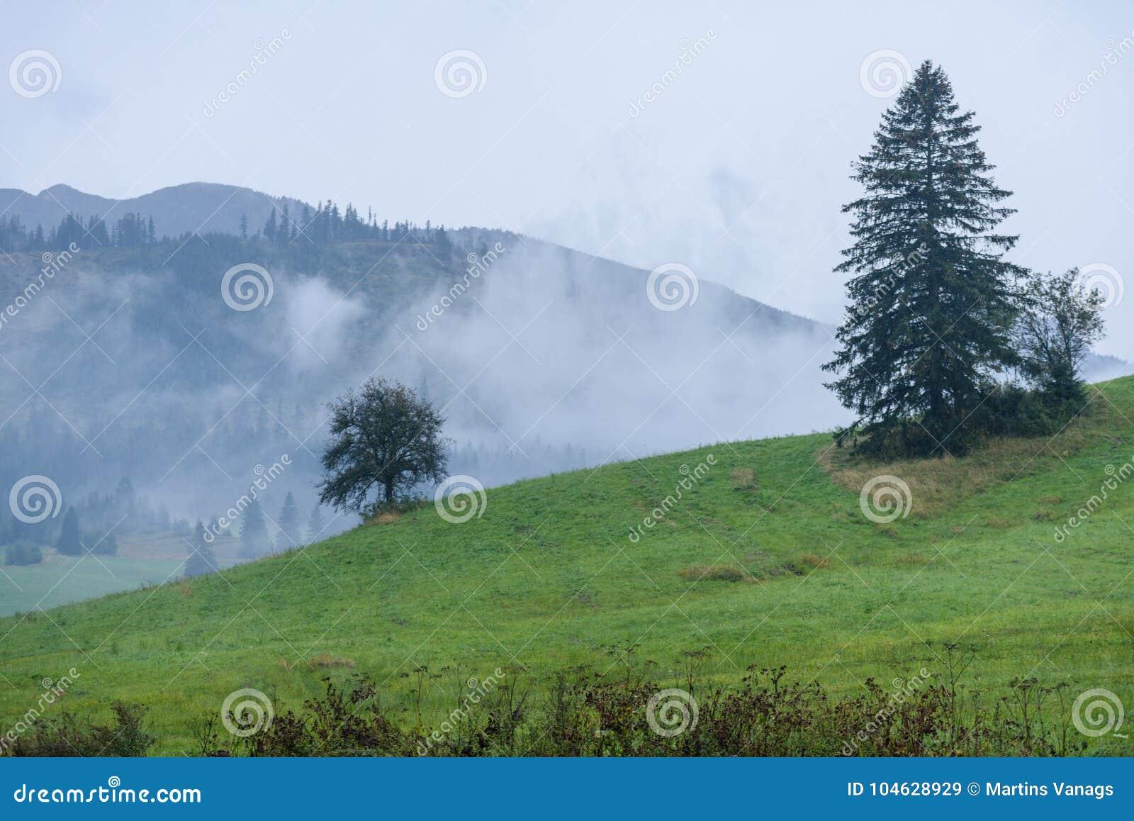 Download De Mening Van Het Berggebied In Slowakije Stock Afbeelding - Afbeelding bestaande uit ochtend, silhouet: 104628929