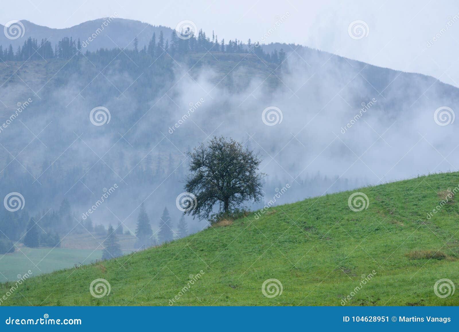 Download De Mening Van Het Berggebied In Slowakije Stock Afbeelding - Afbeelding bestaande uit fantasie, fairy: 104628951