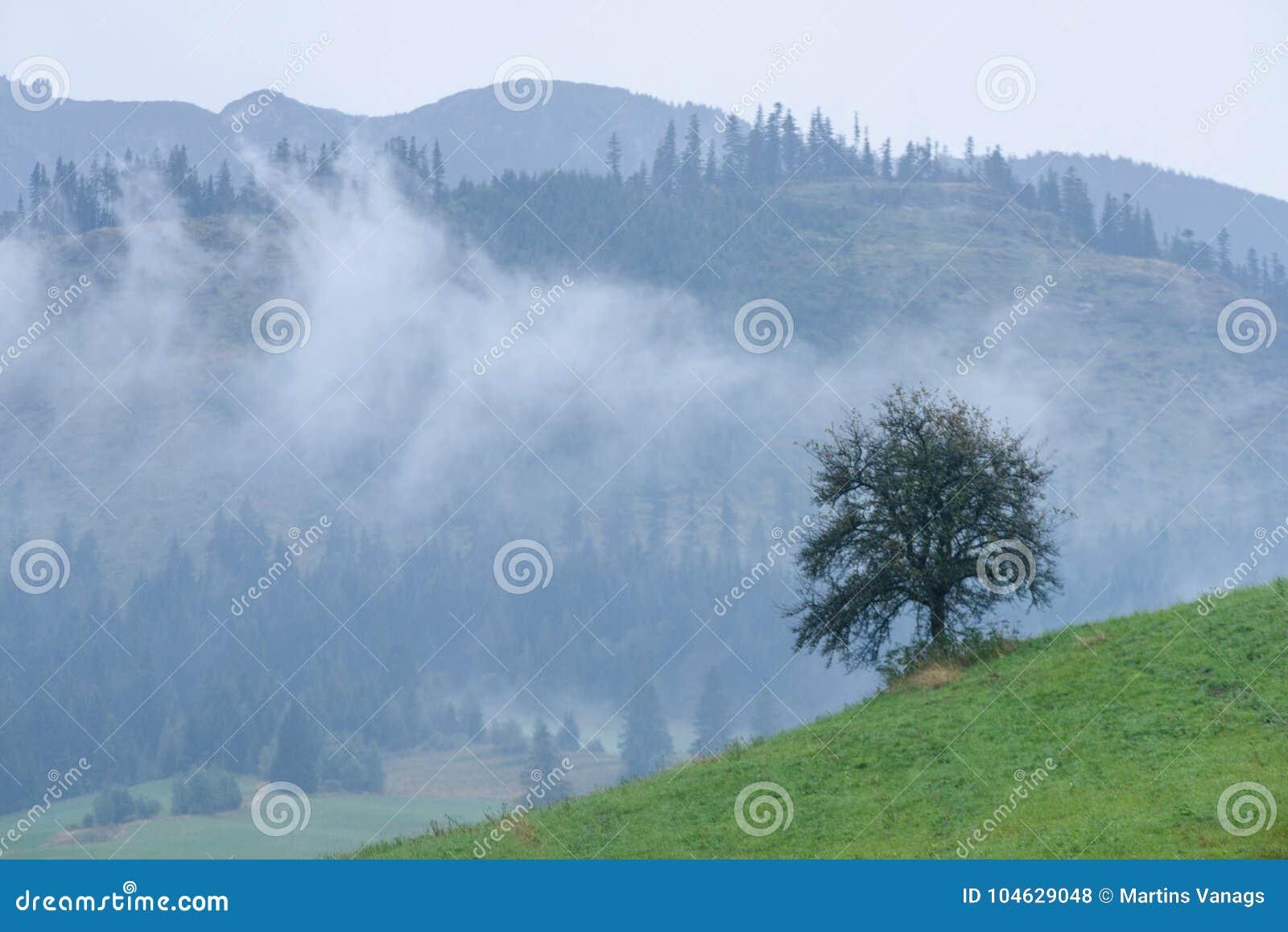 Download De Mening Van Het Berggebied In Slowakije Stock Foto - Afbeelding bestaande uit schoonheid, foggy: 104629048