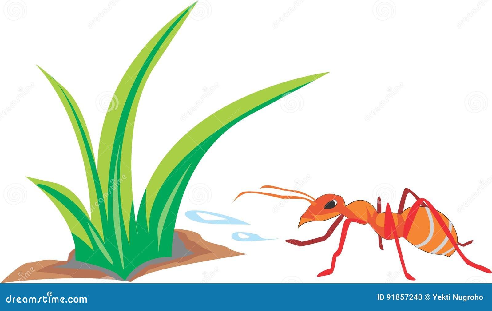De mieren zijn ijverig