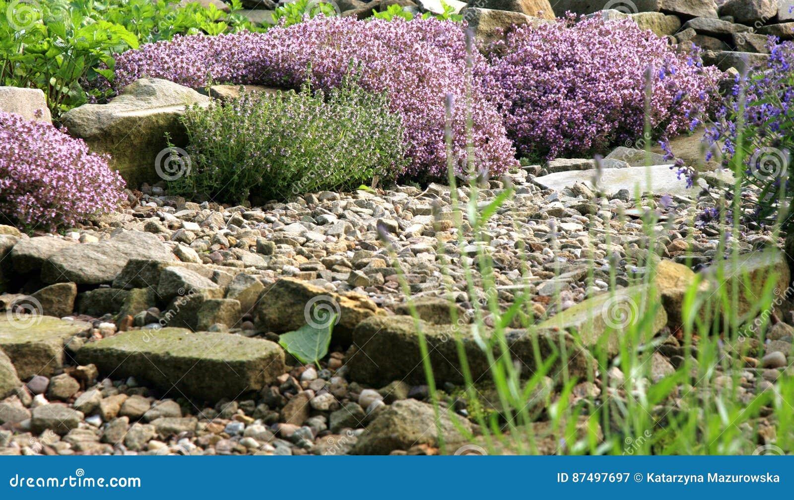 De milieuvriendelijke tuin van het land