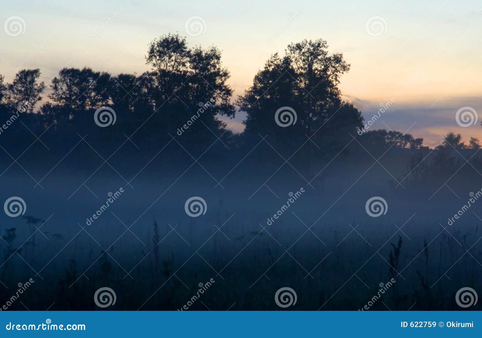 De mist van de avond
