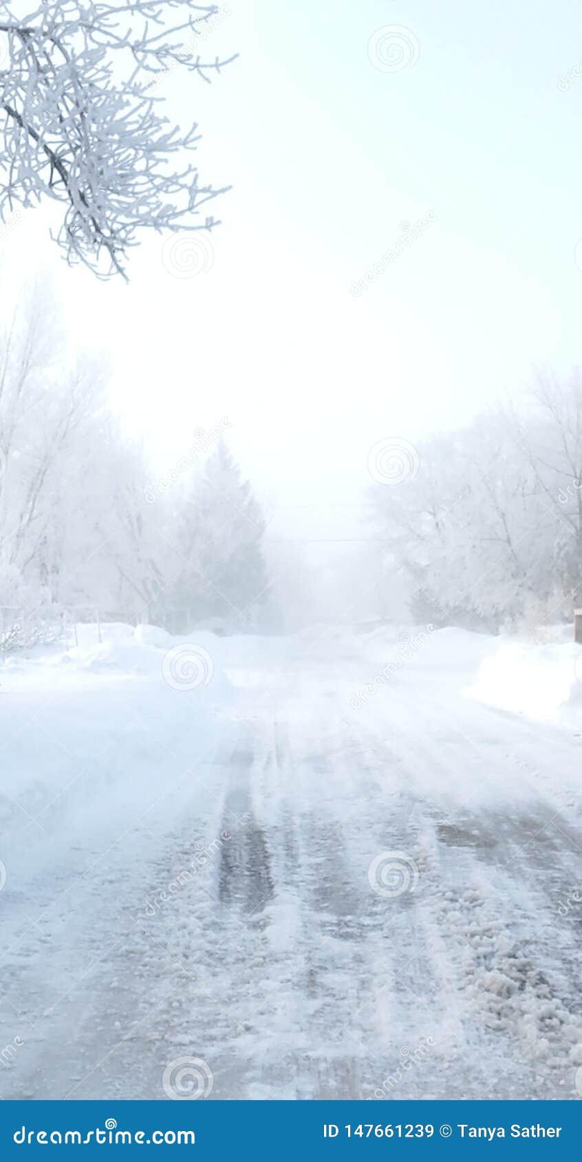 De mistige Berijpte Aandrijving van de de Winterochtend