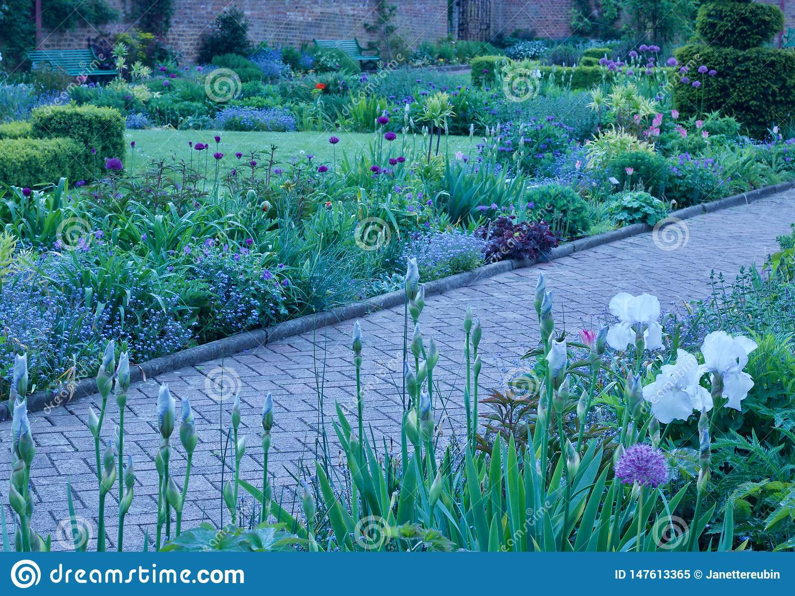 De mooie Engelse tuin van het plattelandshuisjeland met weg die tussen bloembedden lopen - beeld