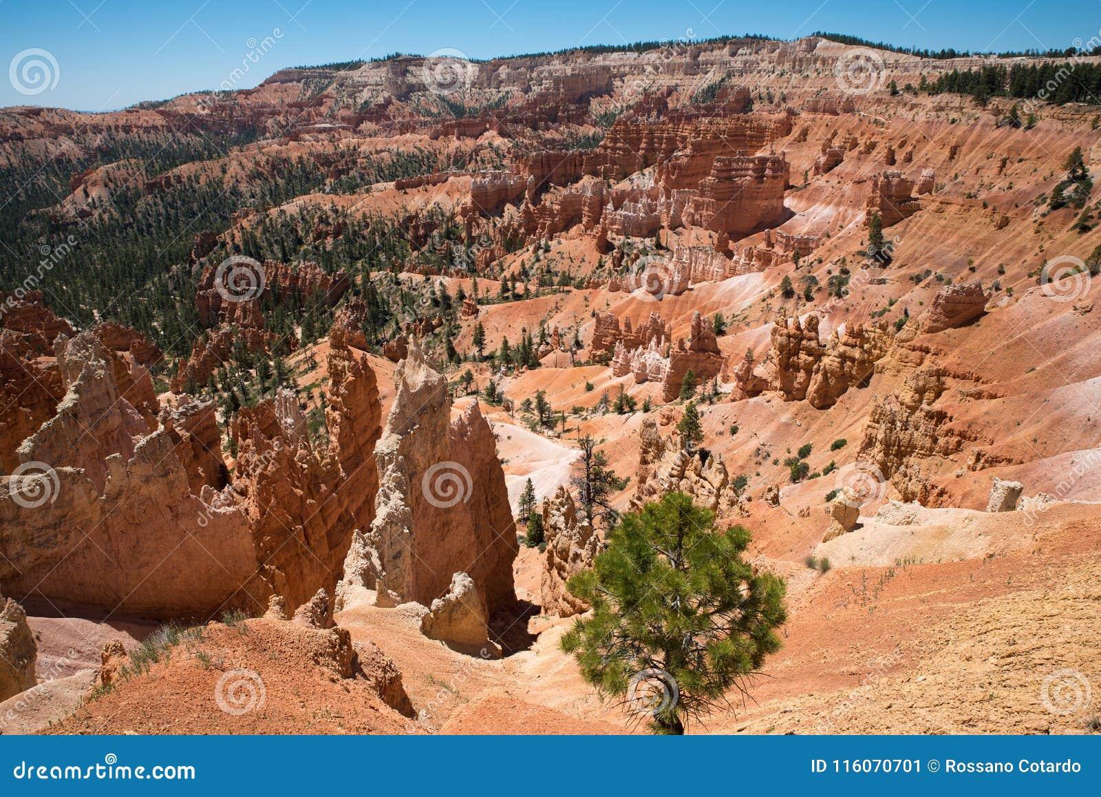 De mooie kleuren van Bryce Canyon Landscape