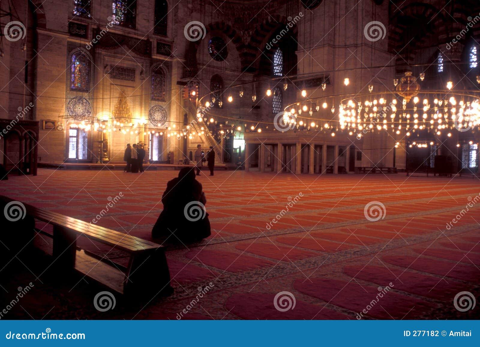 De Moskee van Istanboel