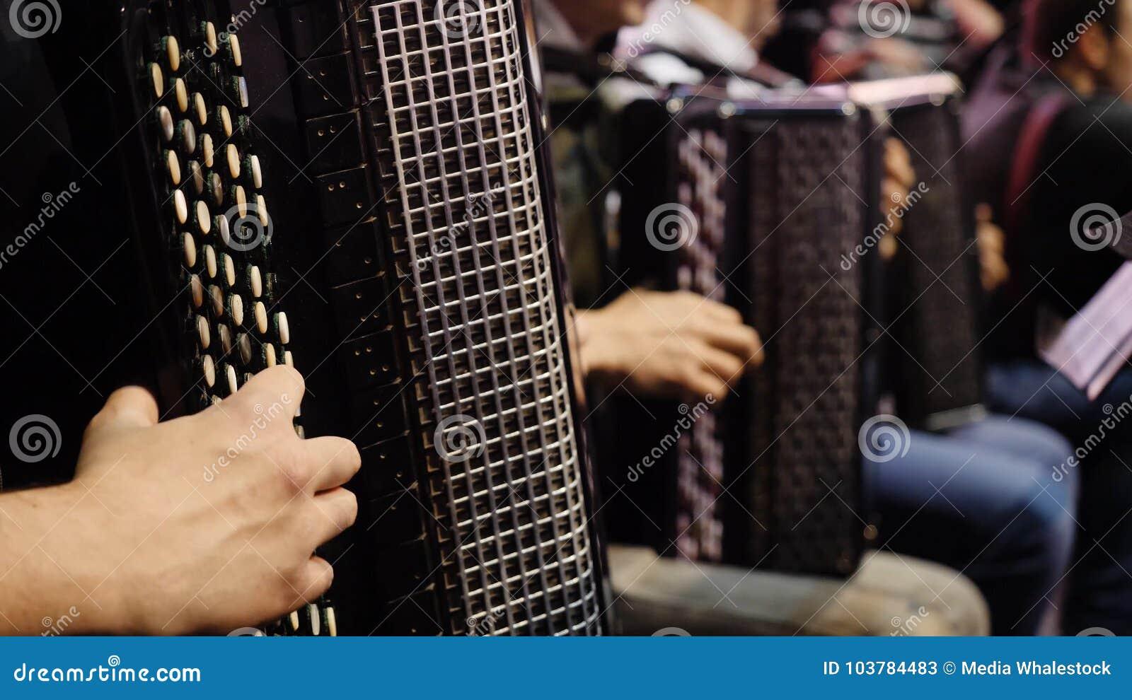 De musicus die de harmonika spelen Close-up, musici die de harmonika spelen Groep musici die de harmonika spelen