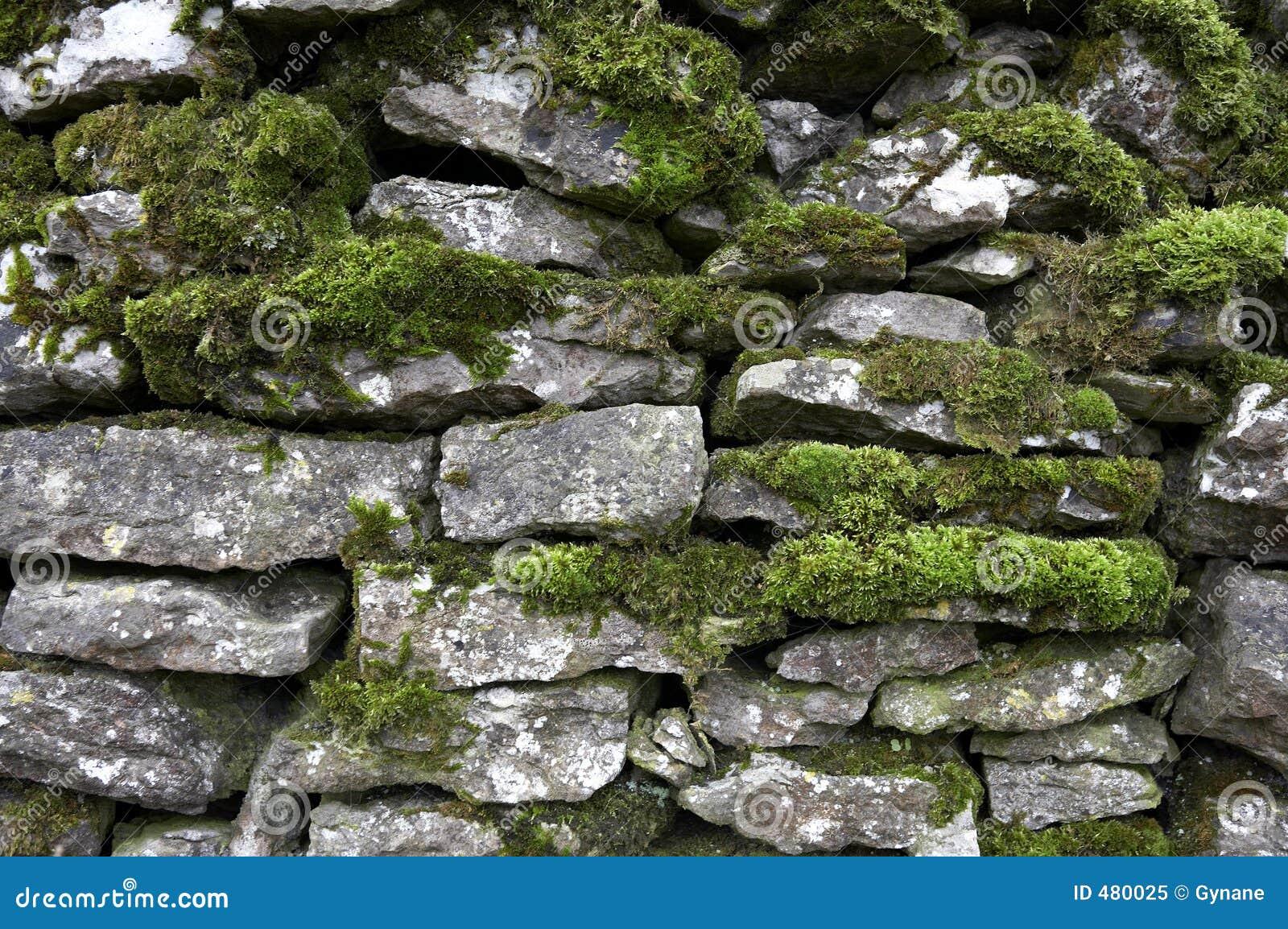 De muurdetail van Drystone