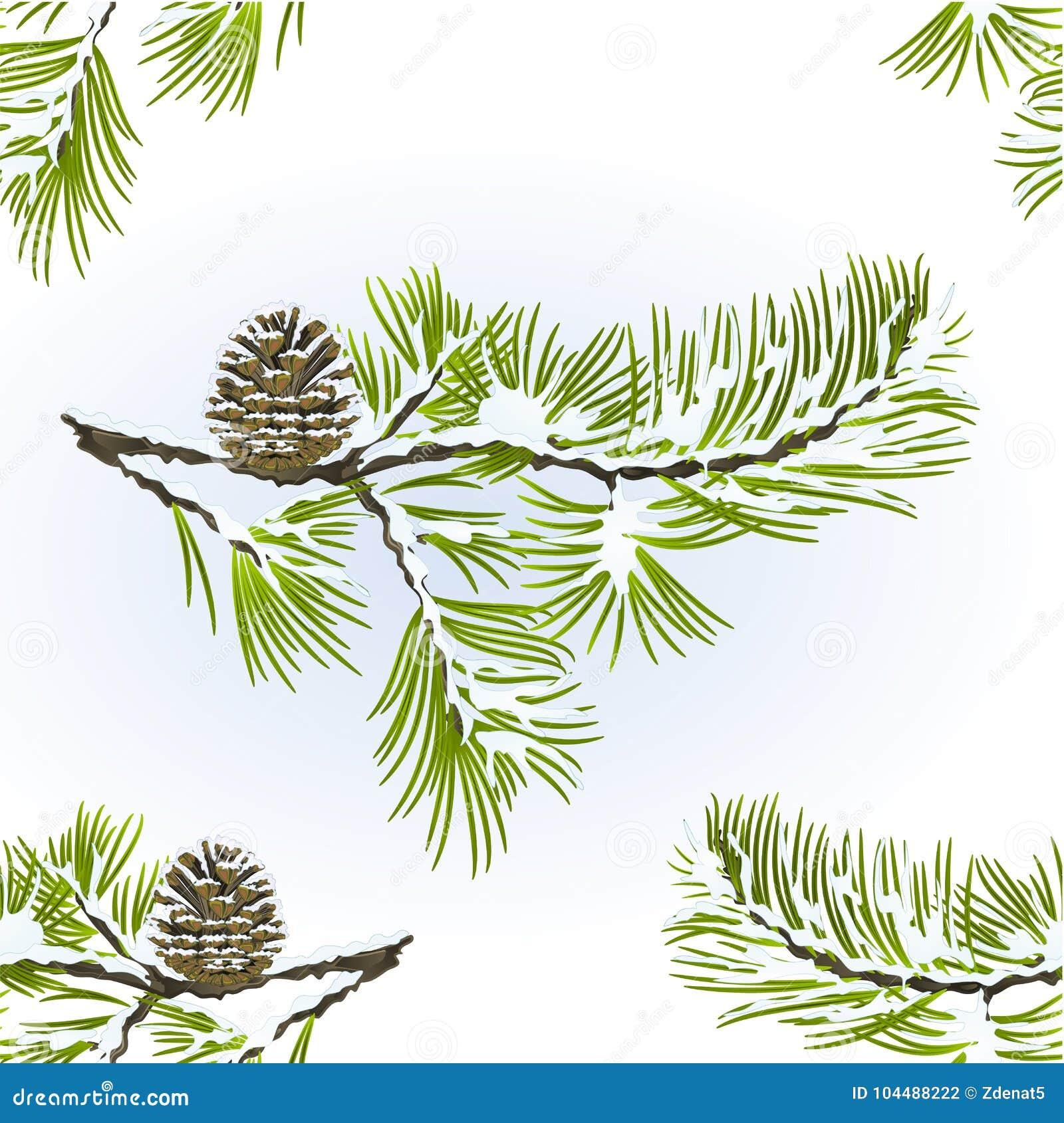 De naadloze boom van de textuurpijnboom en de winter sneeuw natuurlijke van de achtergrond denneappeltak editable vitage vectoril