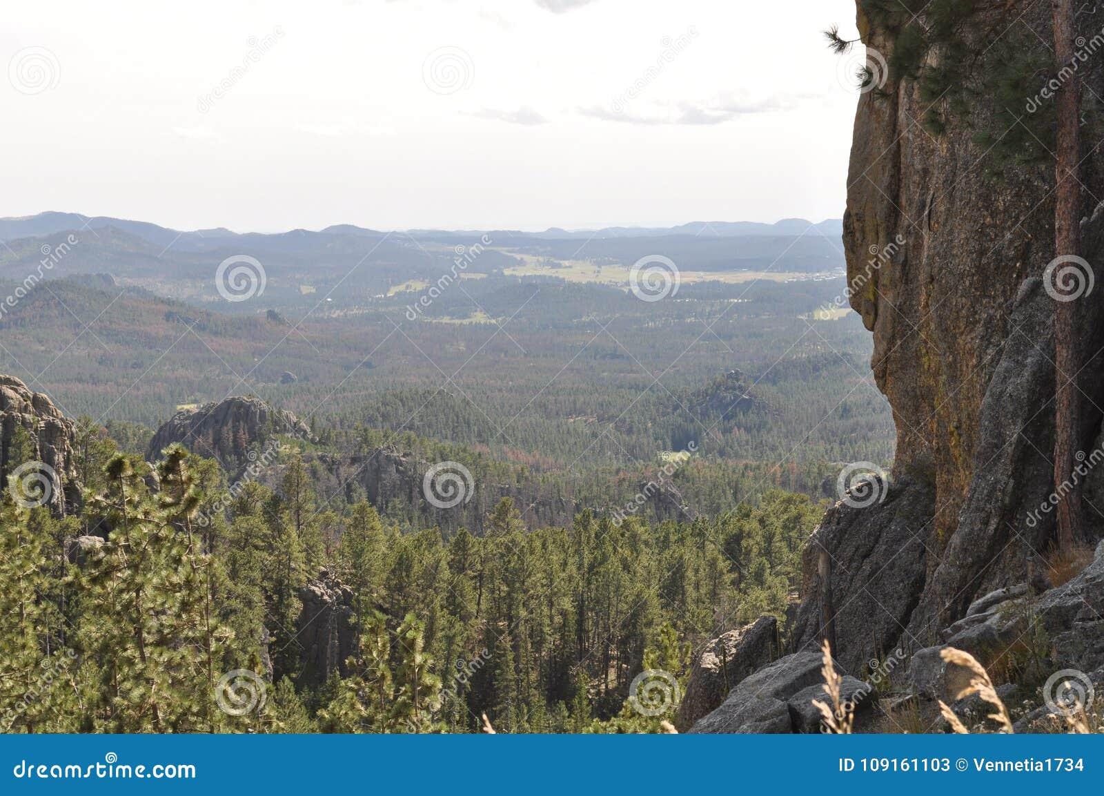 De Naalden in de Zwarte Meningen Heuvels Zuid- van Dakota en van de Berg