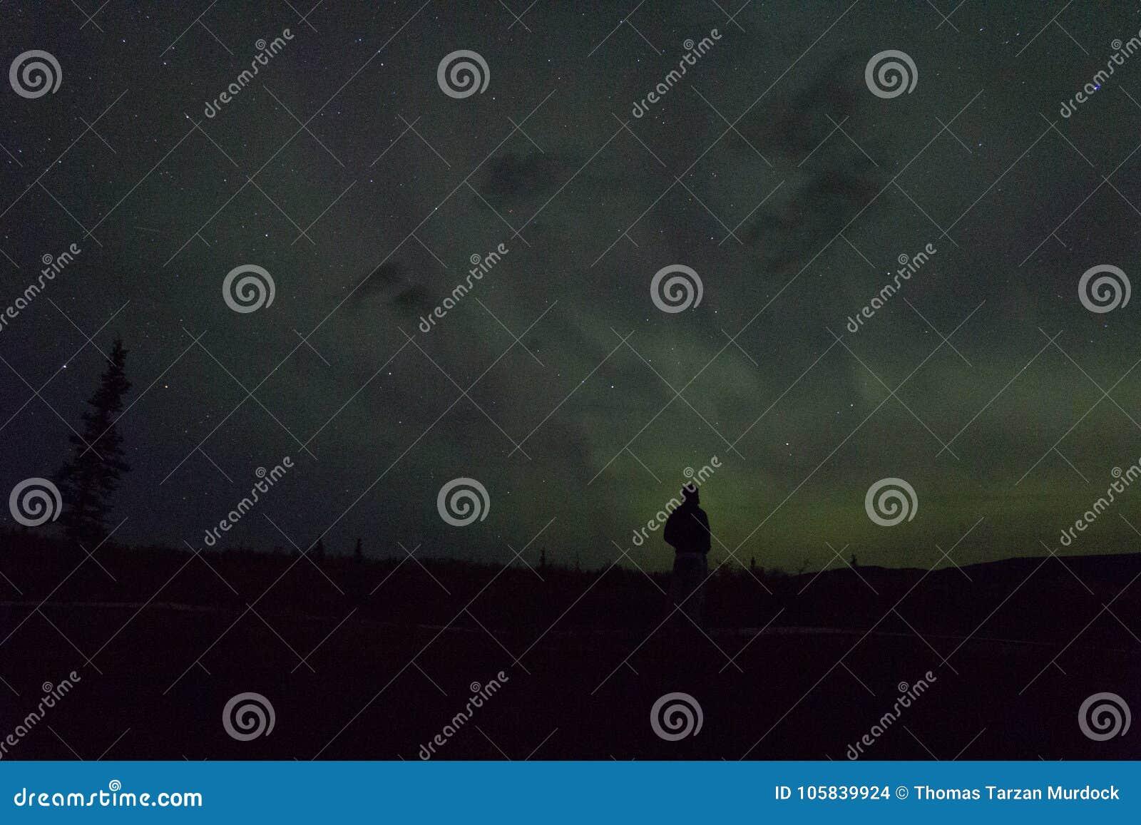 De noordelijke lichten arcoss blacked hemel van het leven Van Alaska omhoog starend bij de sterren Noordelijke lichten over de zw