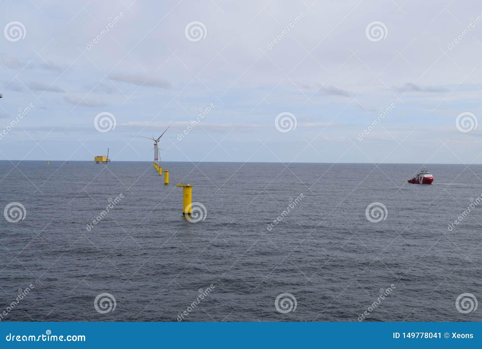De Noordzee 2019 van het windlandbouwbedrijf