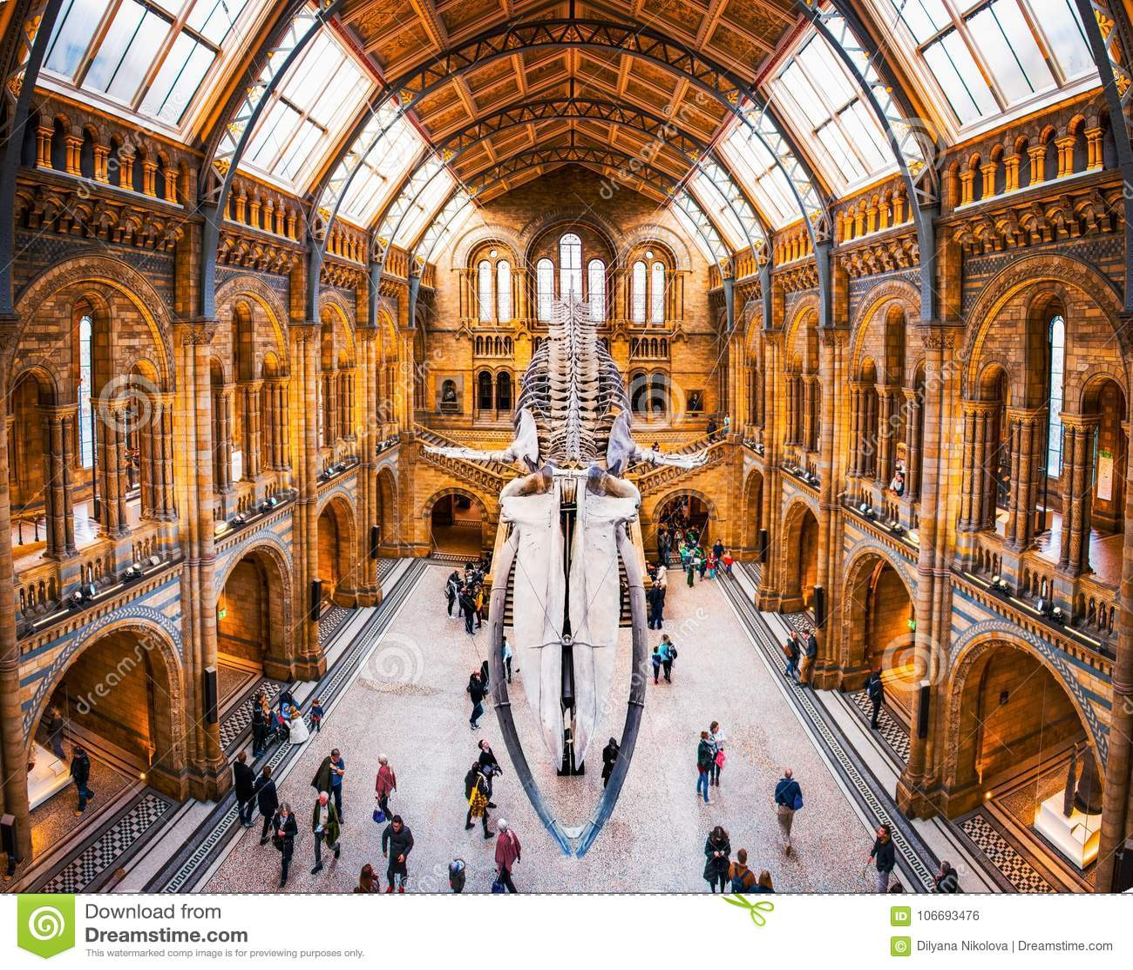 27 de novembro de 2017, Londres, Inglaterra, museu histórico nacional Vista dianteira de um esqueleto da baleia, parte da exposiç